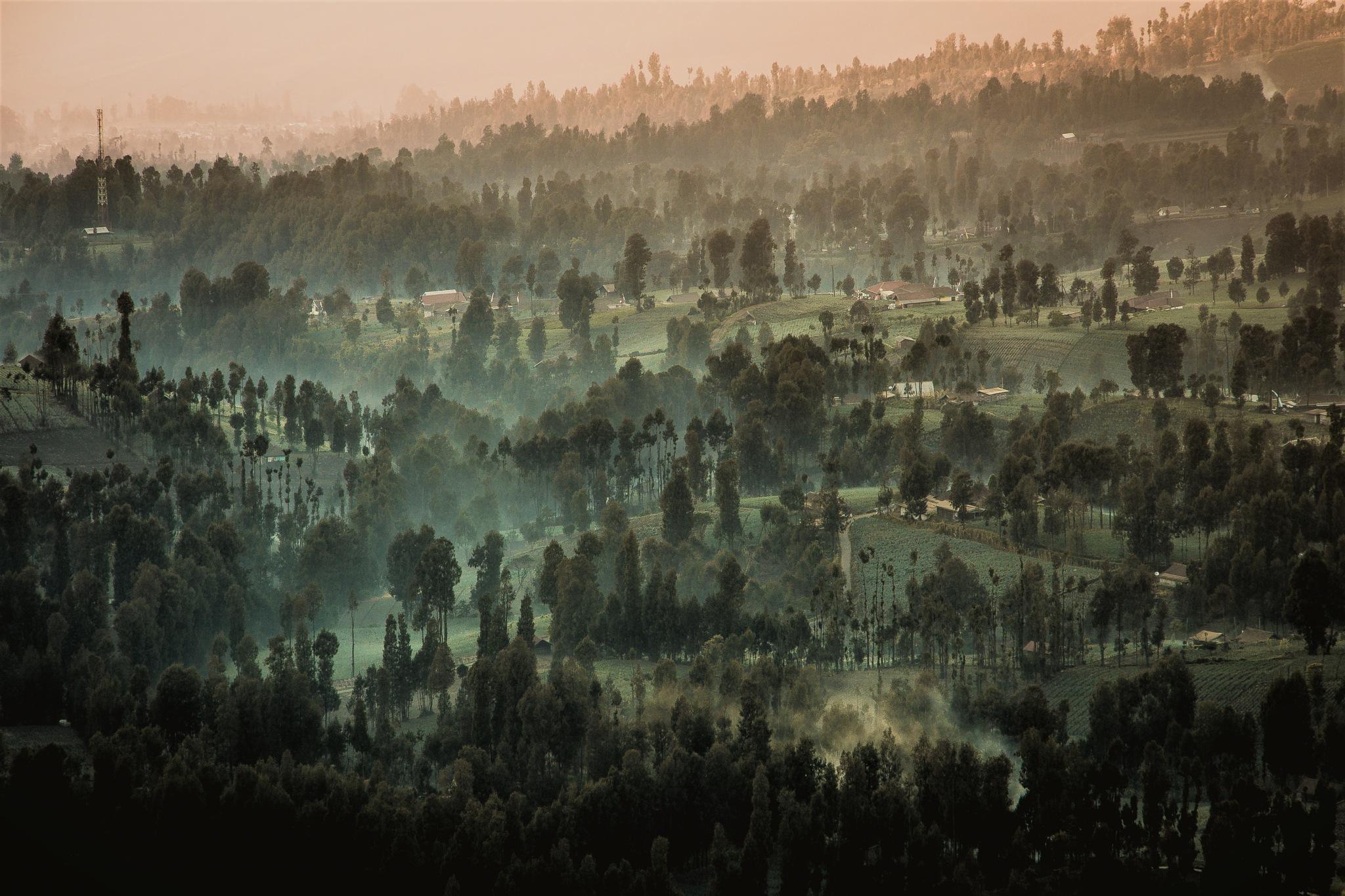 Rural of Bromo by Aminoz Bi