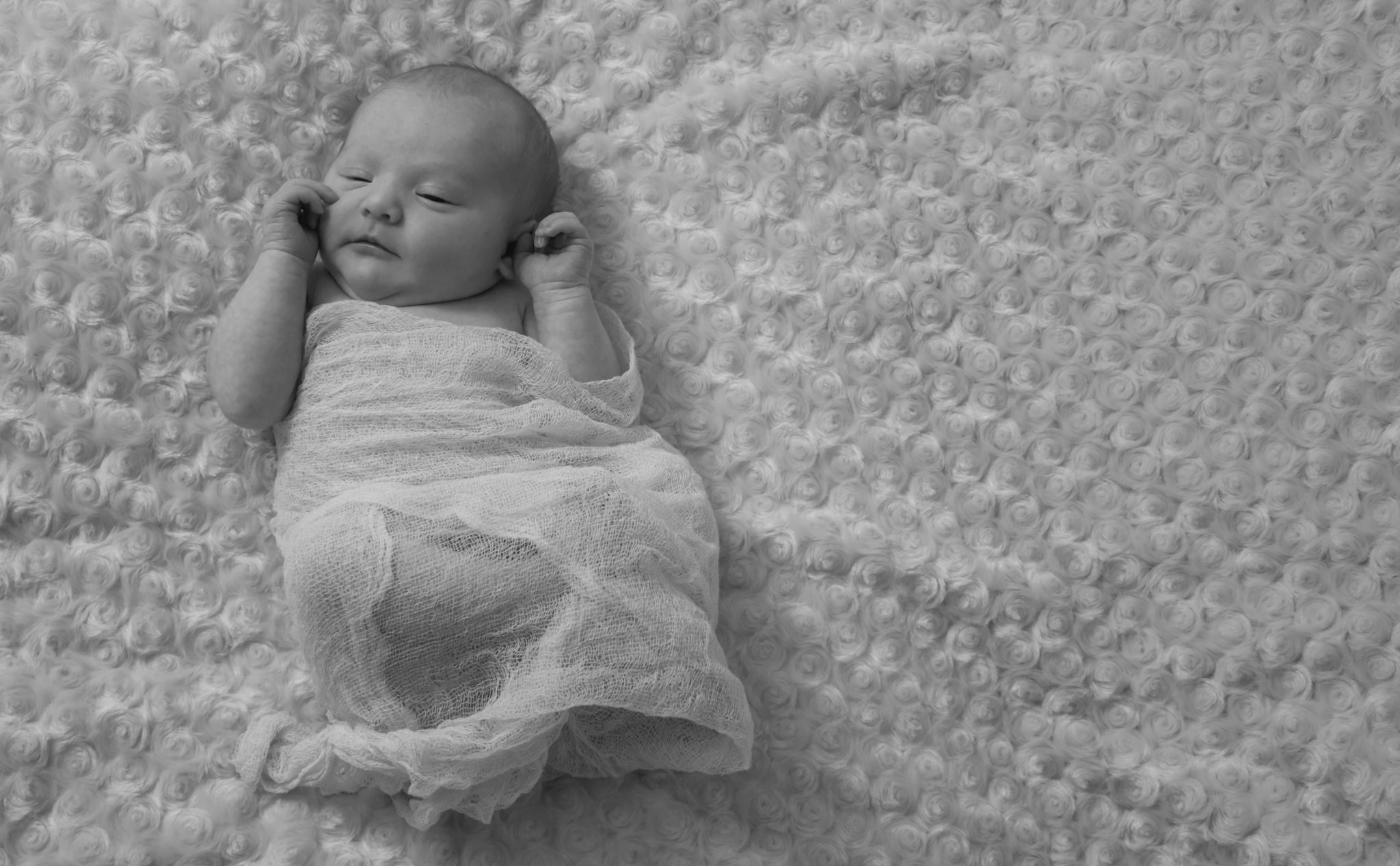 baby kloey by Lindsay Ramsey