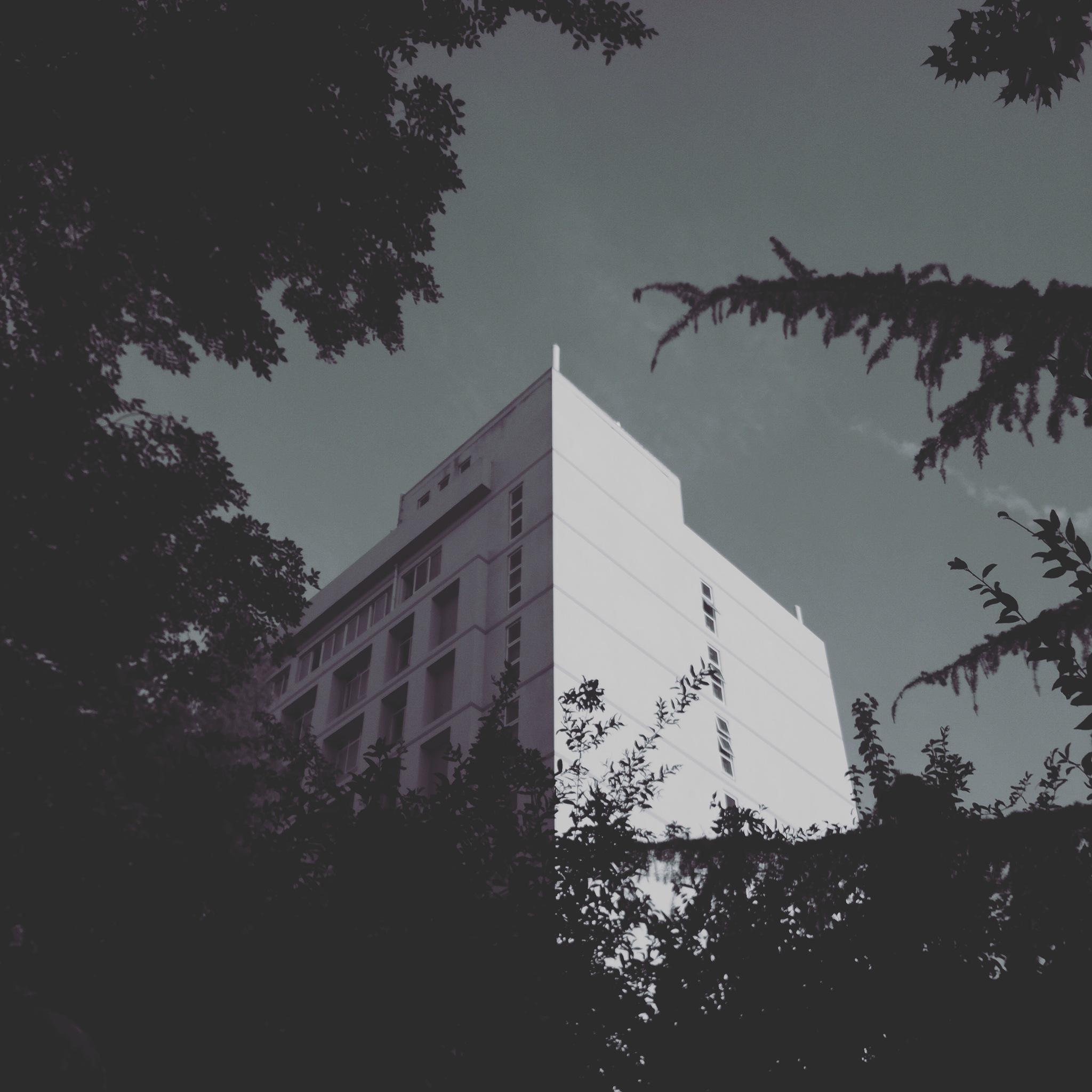 light by 张洺睿
