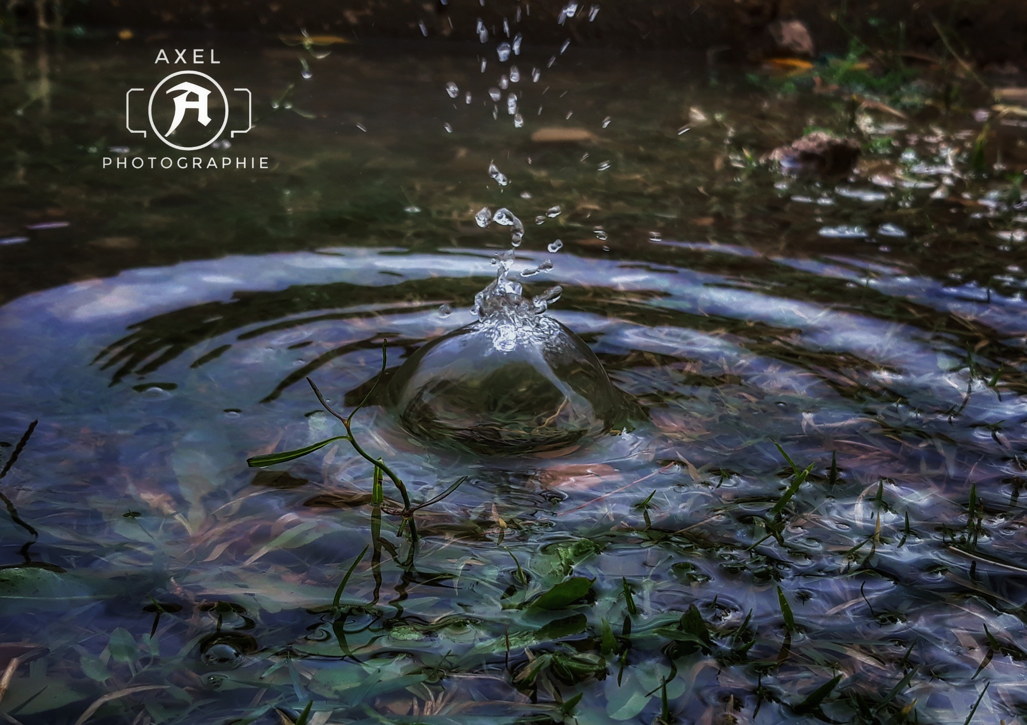 Mobile photographie  by axel photographie