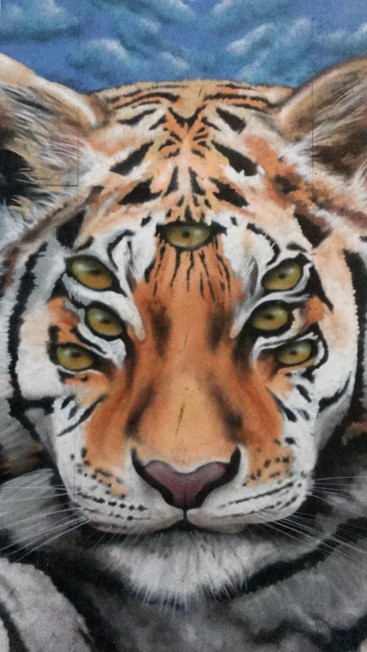Tiger by ThroughTheGlassLens
