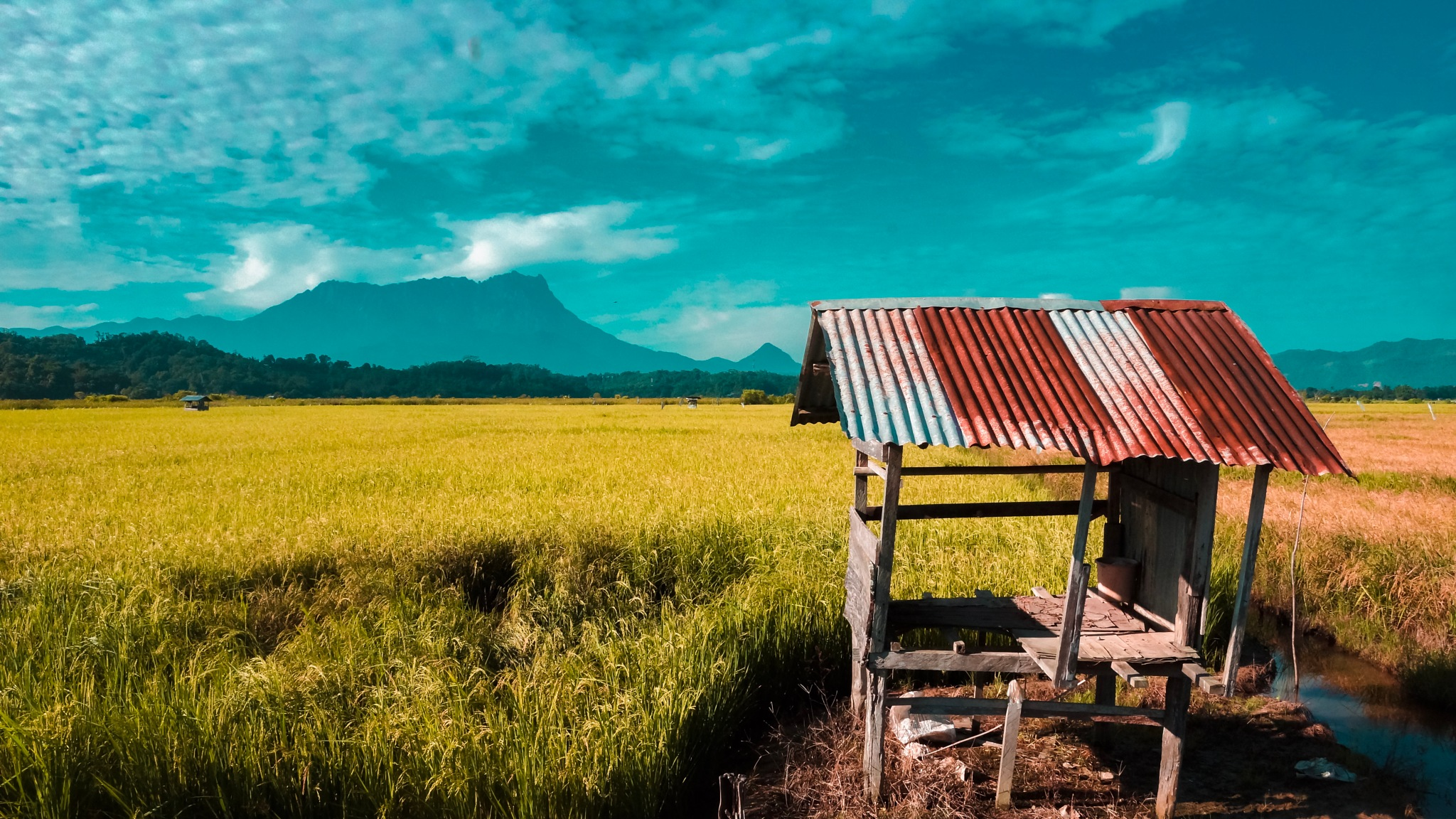 Small hut for the farmers to rest in by Craig Ansibin
