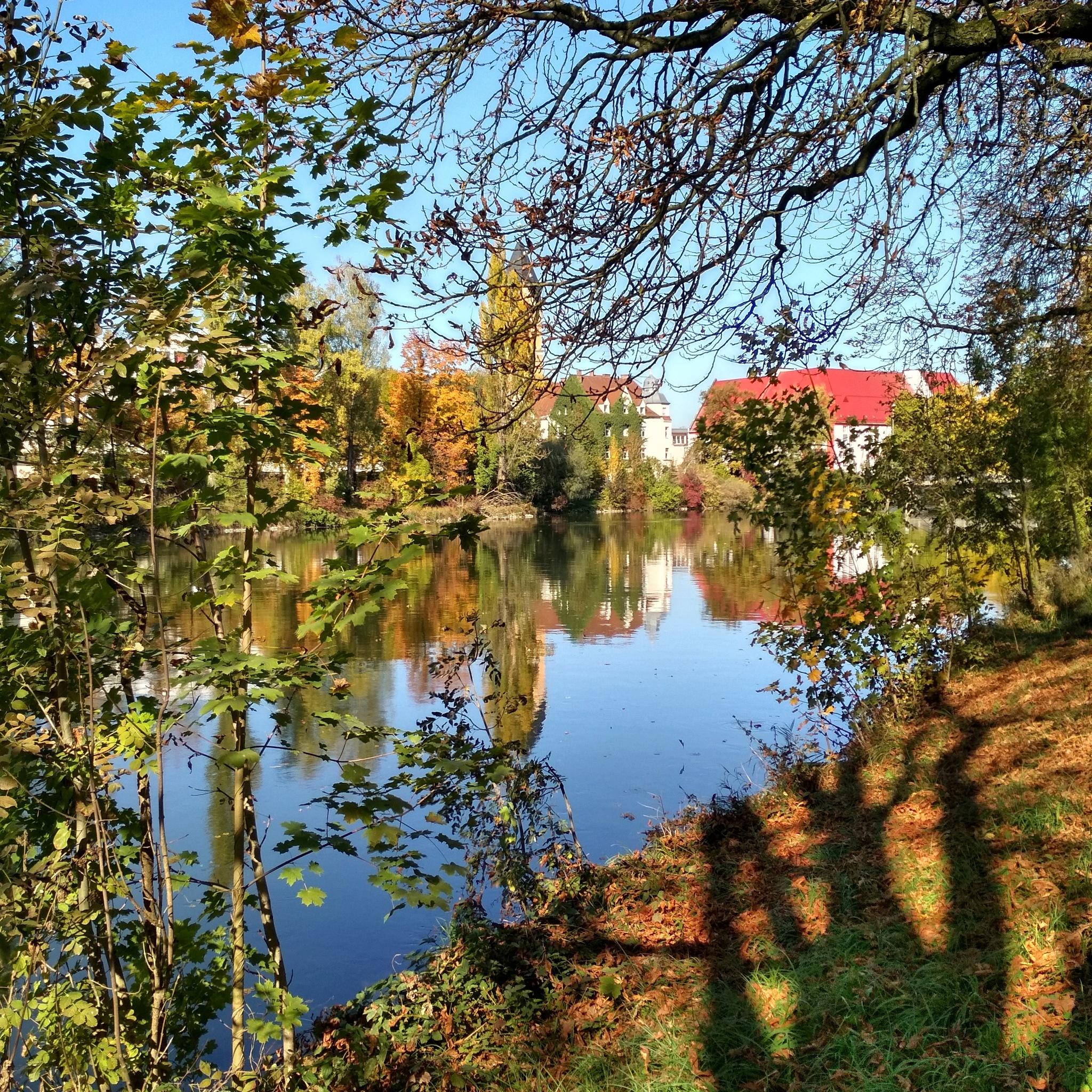 River Isar  by Barbara Csarnai
