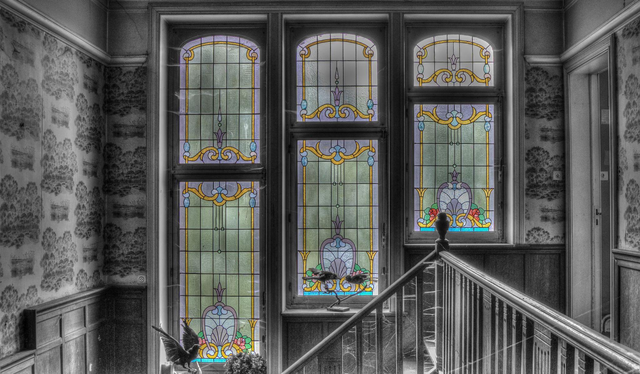 Windows by Joël Arys