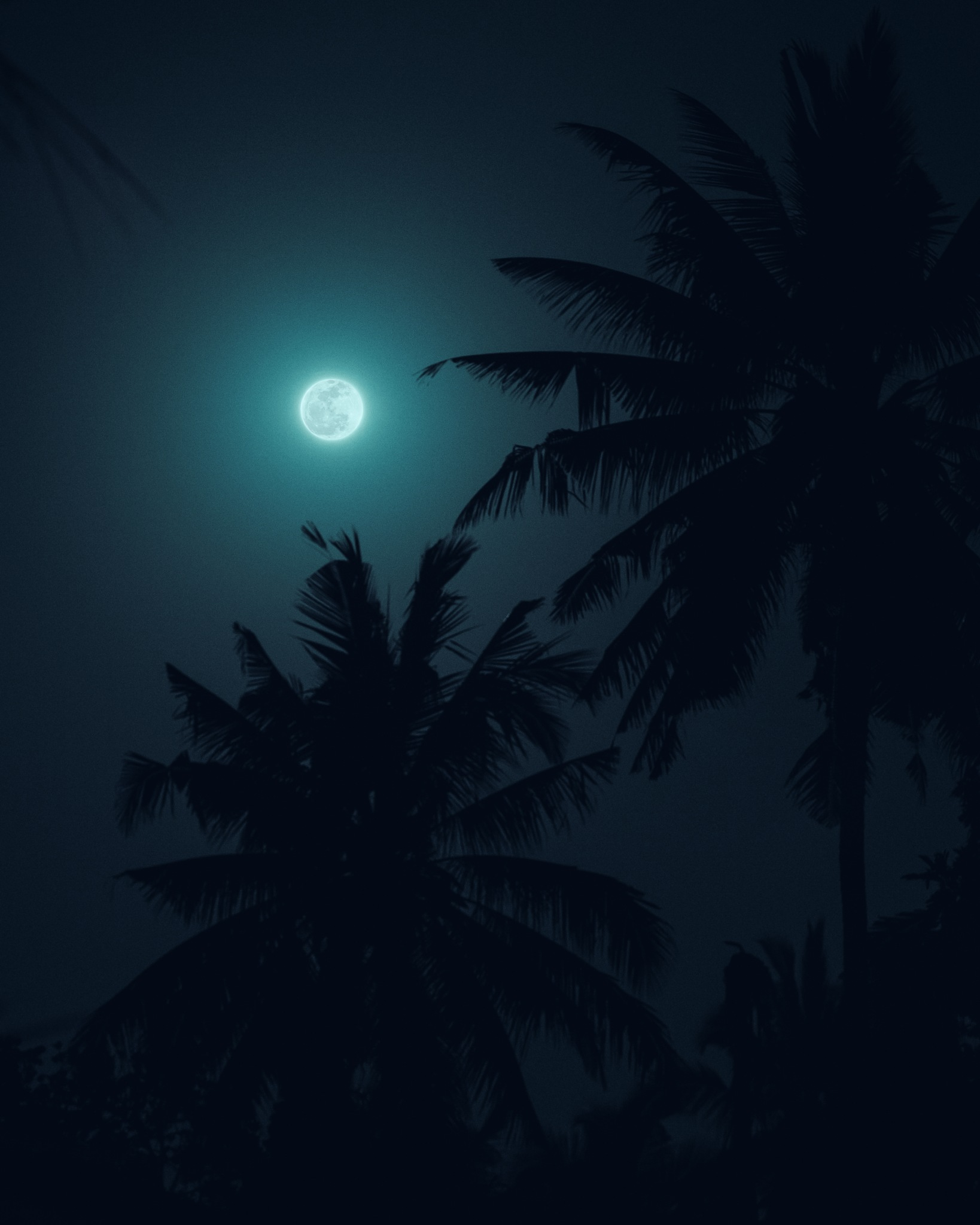 Full Moon by Oleksii Boiko