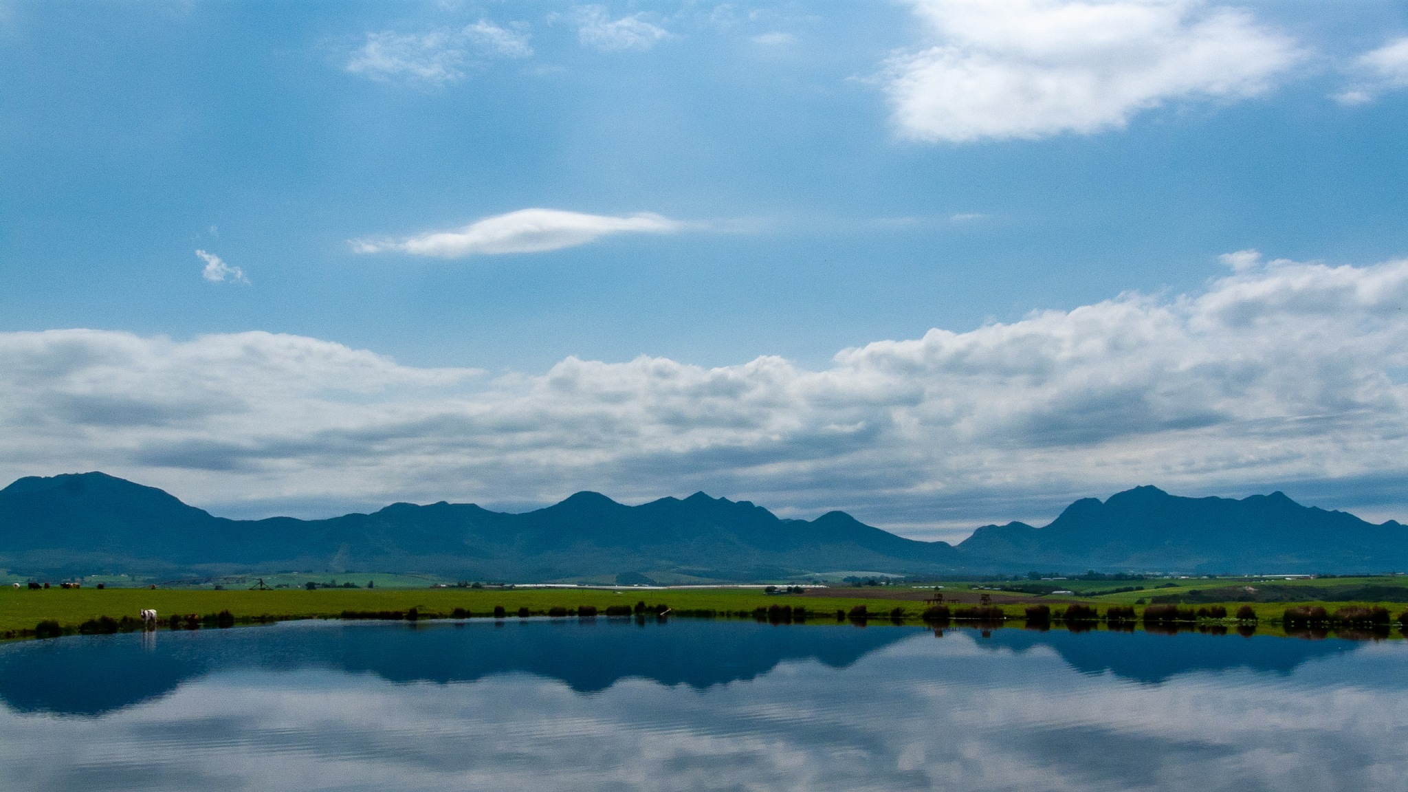 Outeniqua Mountains reflected in a pond by Hercules Smith