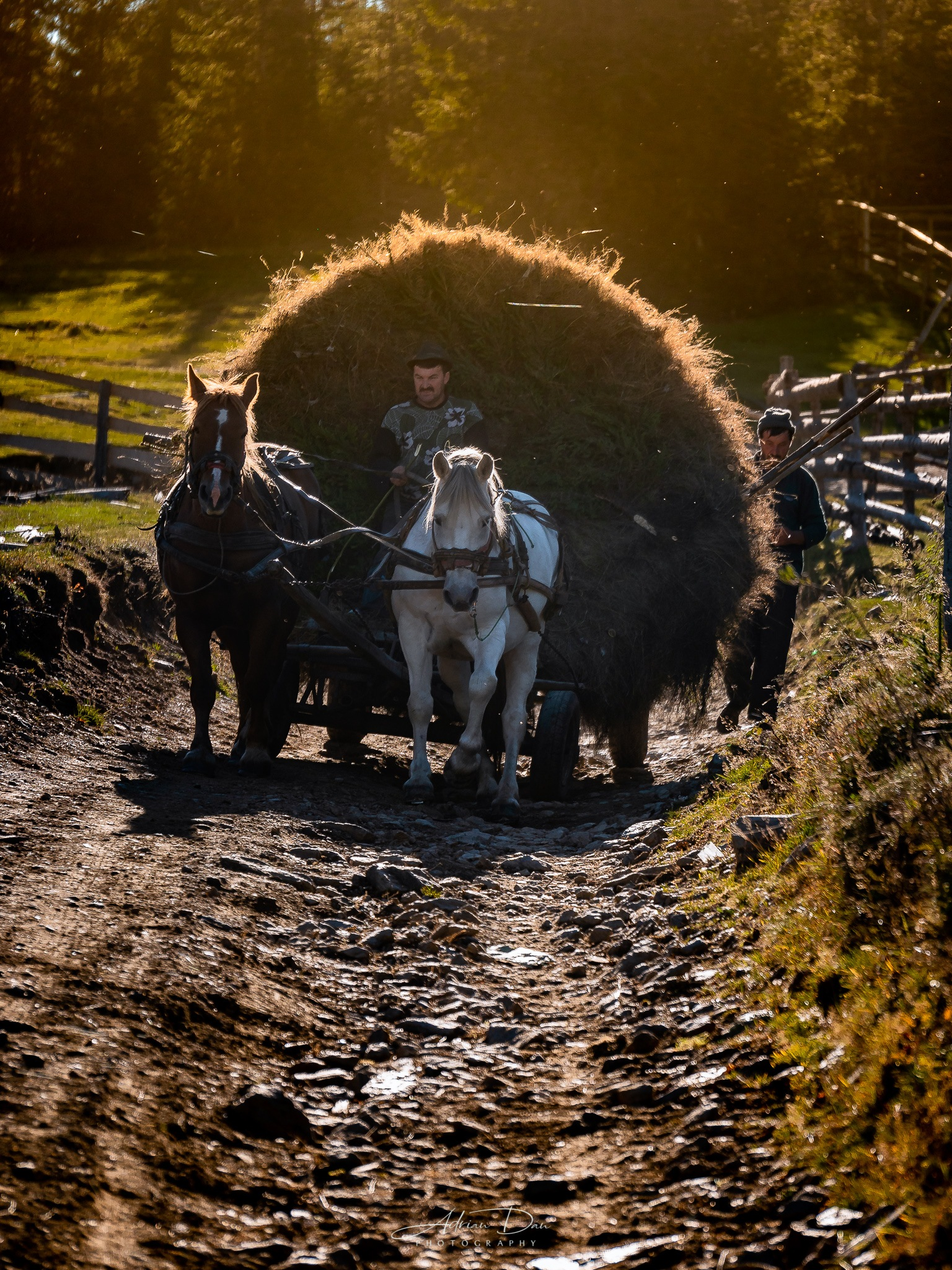 Farmers in Romanian Mountains. by Adrian Dan