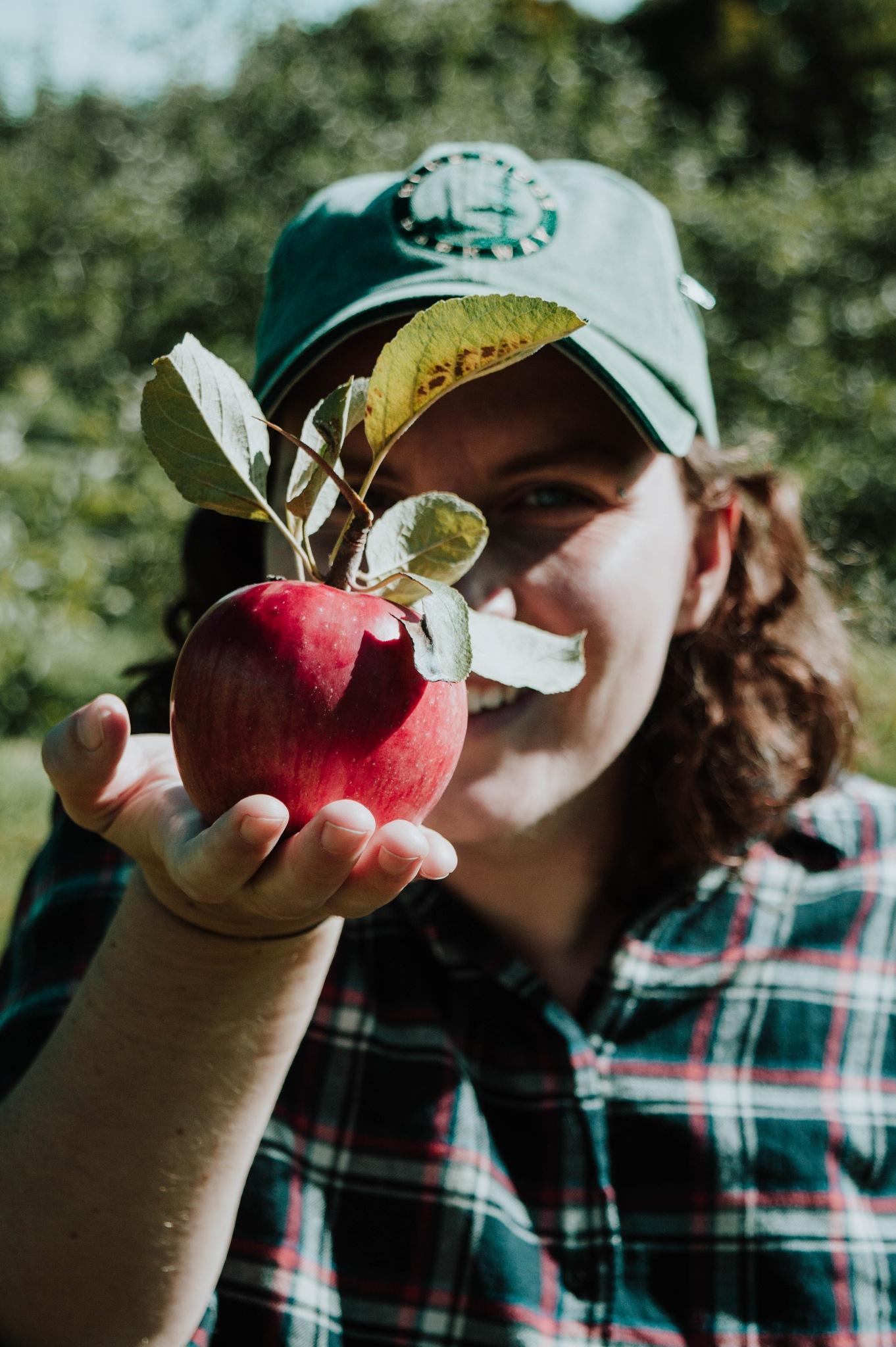 Apple of my eye by Isabel Gregg