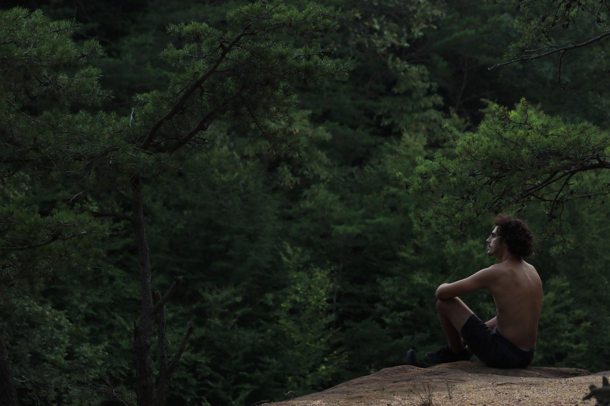 Mountain Man by Wyatt Elkins