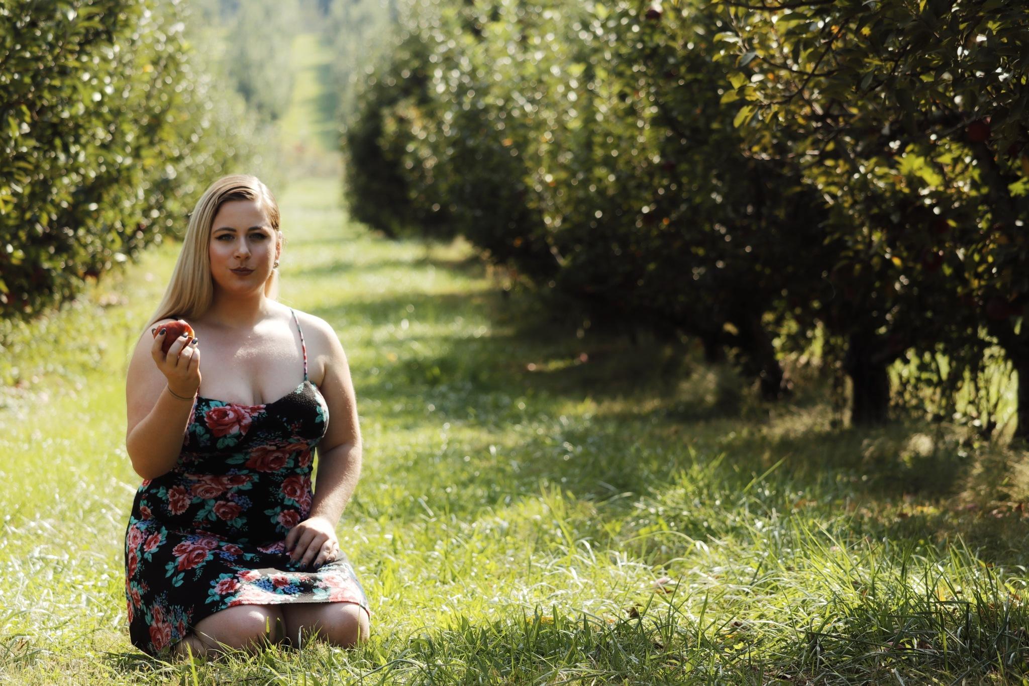 Apples by Wyatt Elkins