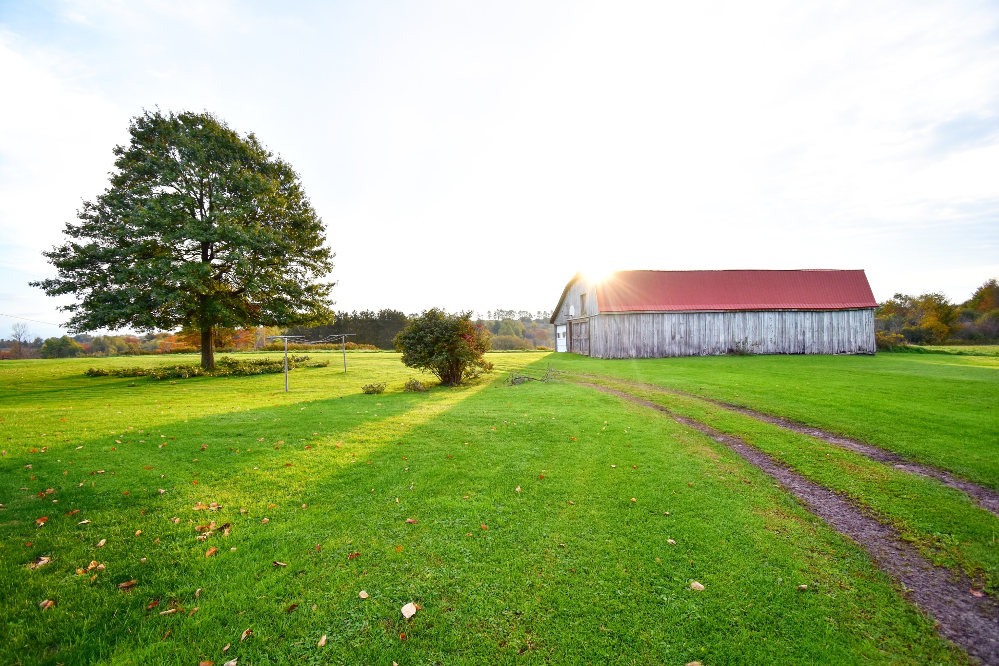 Red Barn by WanderingPappas