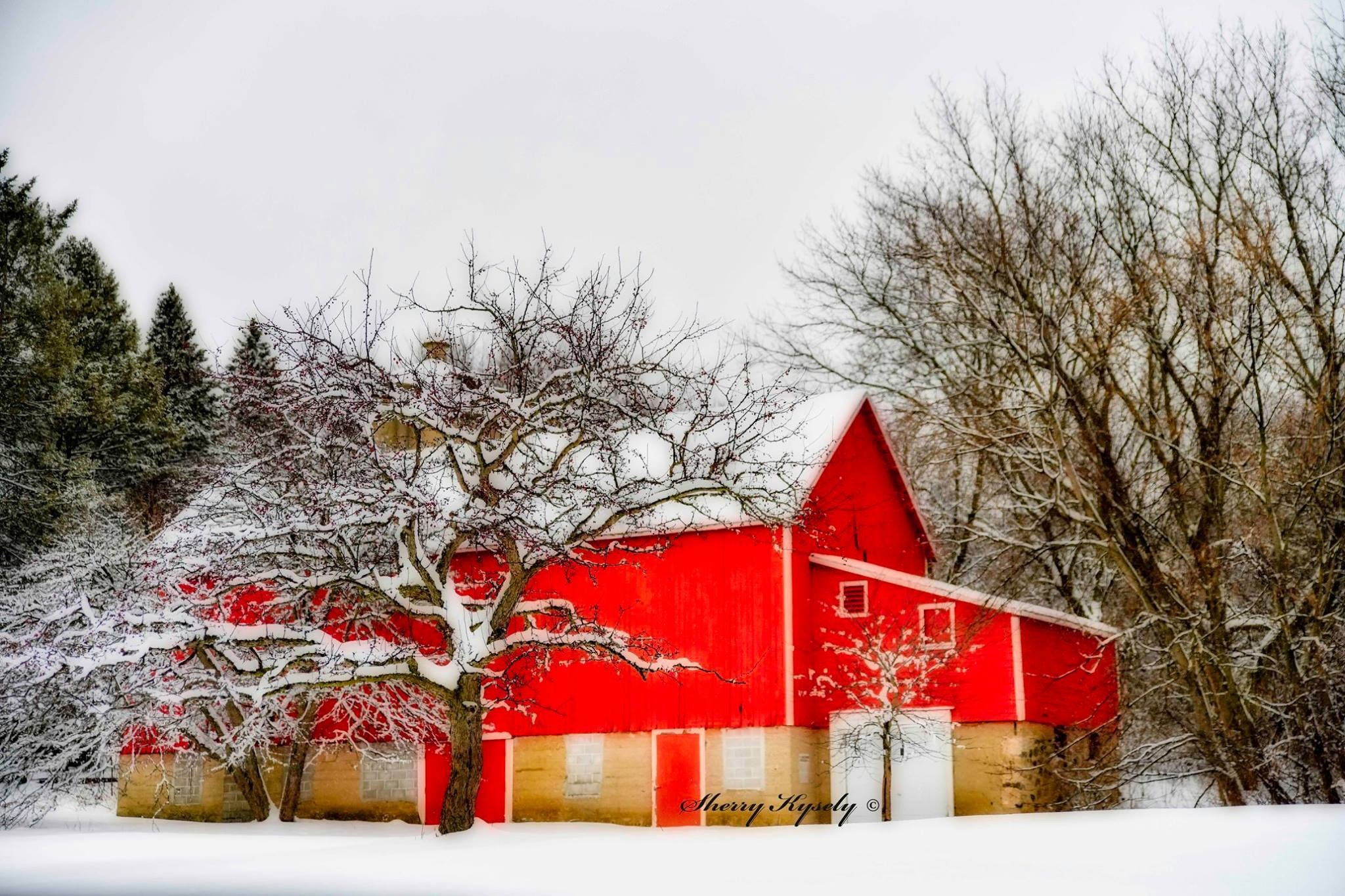 Ol Red Barn by SherryKysely
