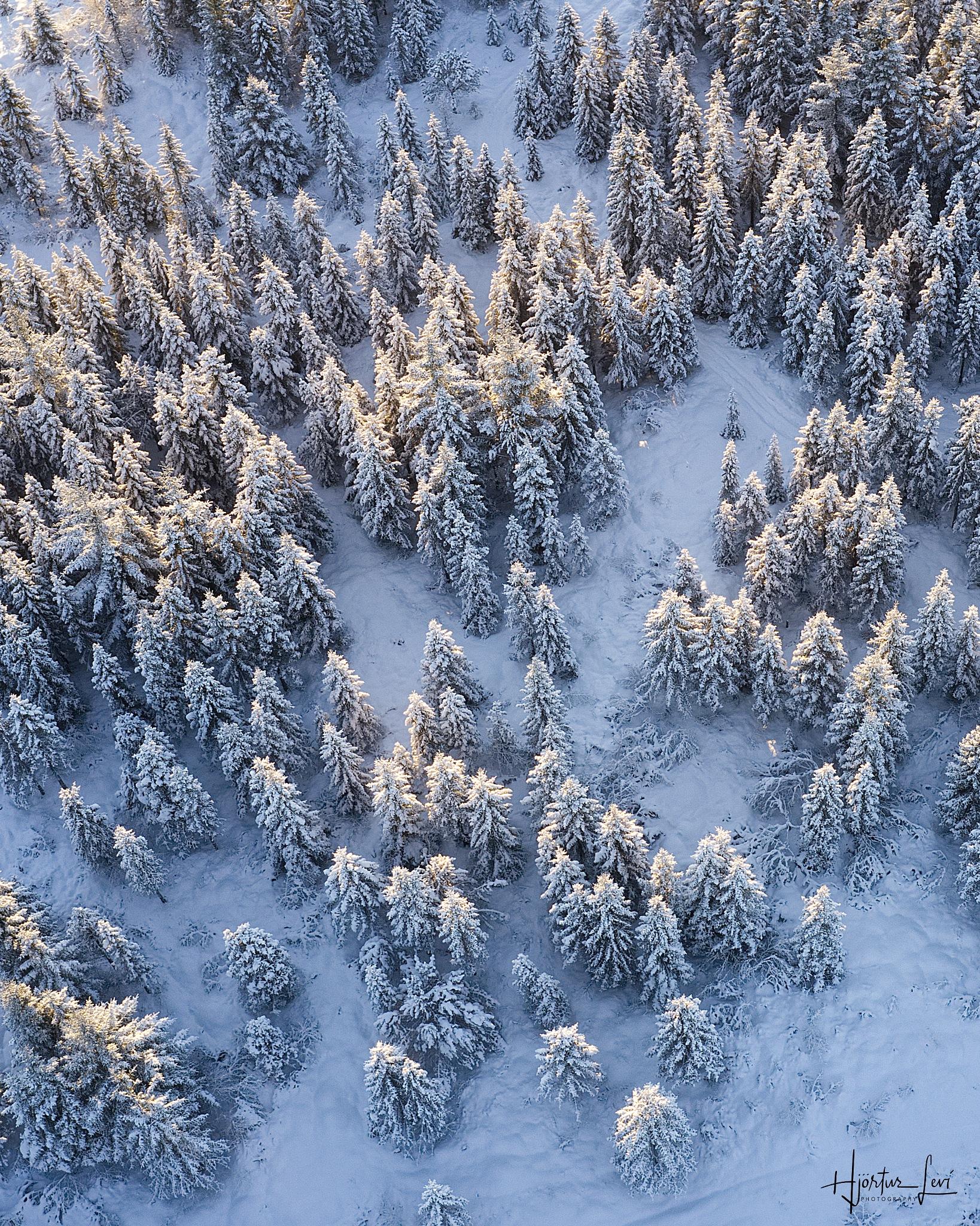 Icelandic Winter by Hjörtur Leví Pétursson
