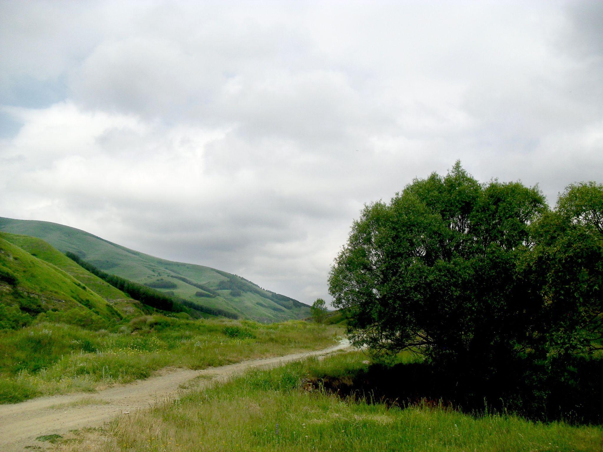 Road by Mher Karapetyan