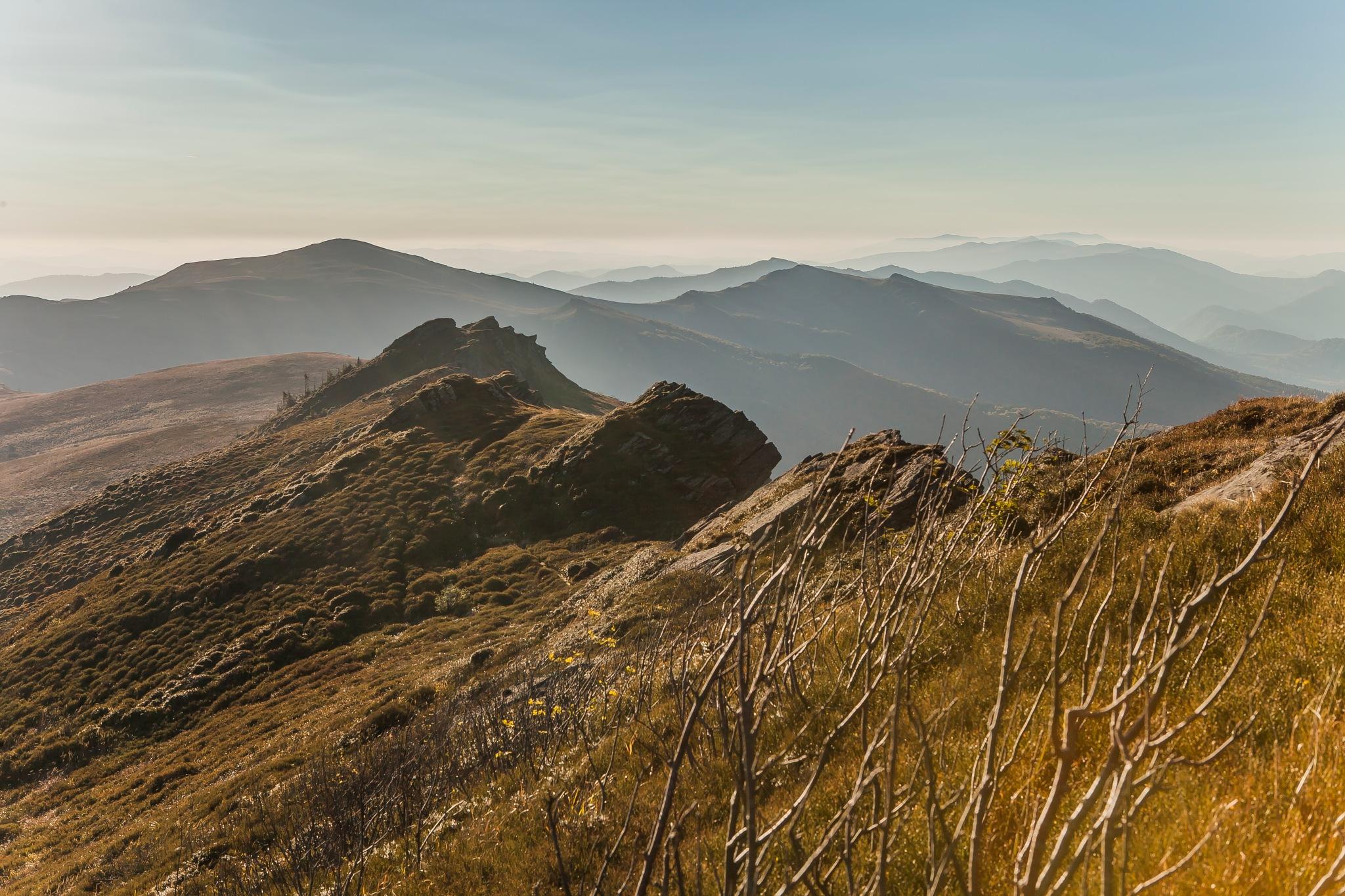 Photo in Landscape #bieszczadymountains bieszczad
