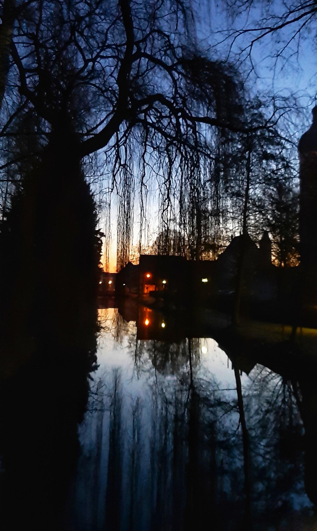 Photo in Landscape #today #heute #vordemsonnenaufgang #wasser #spiegelung #water #reflection