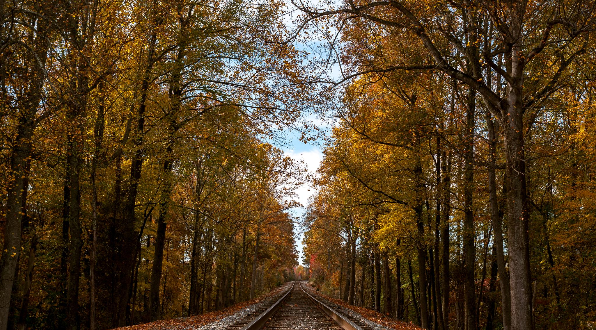 Railroad by isaacgill