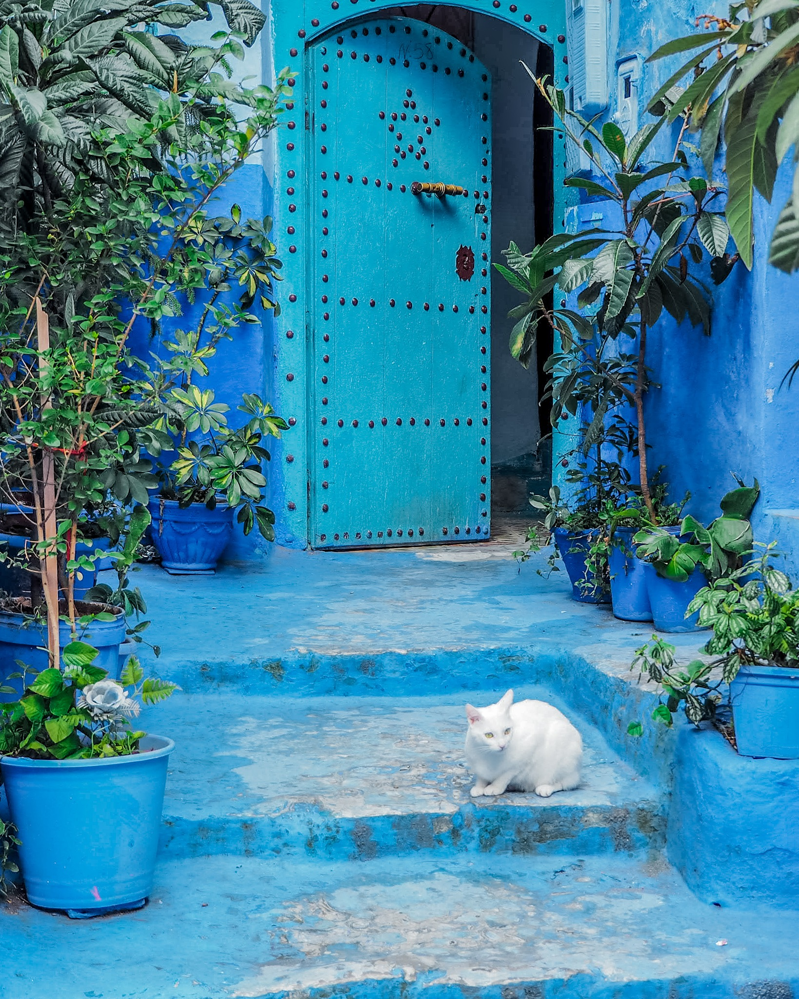 Chefchaouen, Morocco by Laura Martín