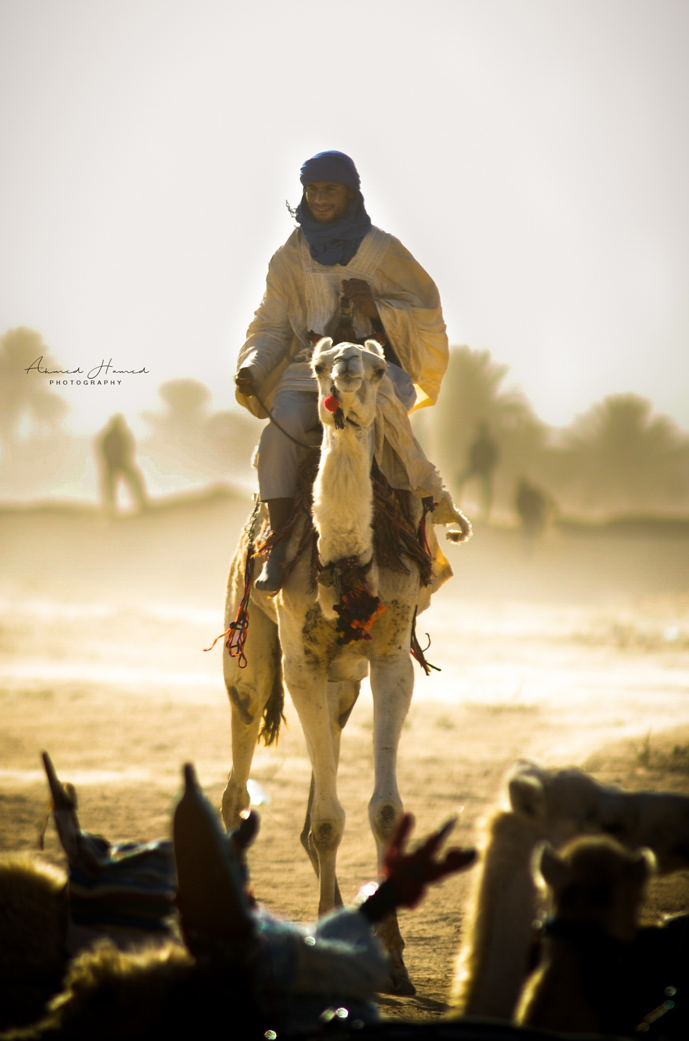 Untitled by Hamed Ahmed