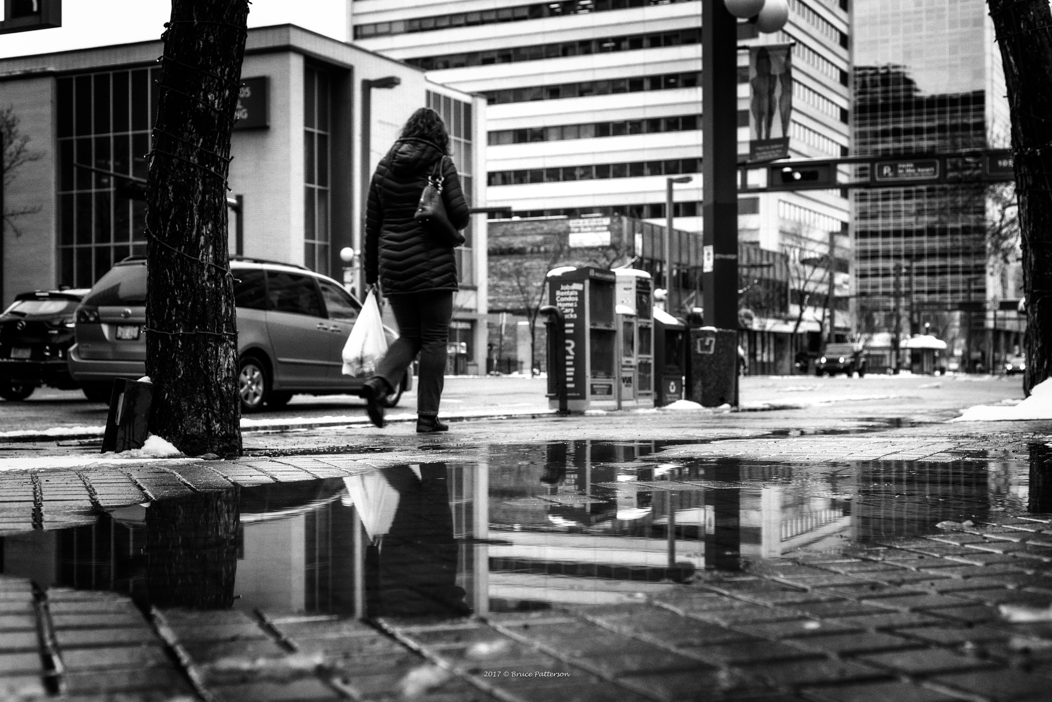Another Wet Day by Bruce Patterson