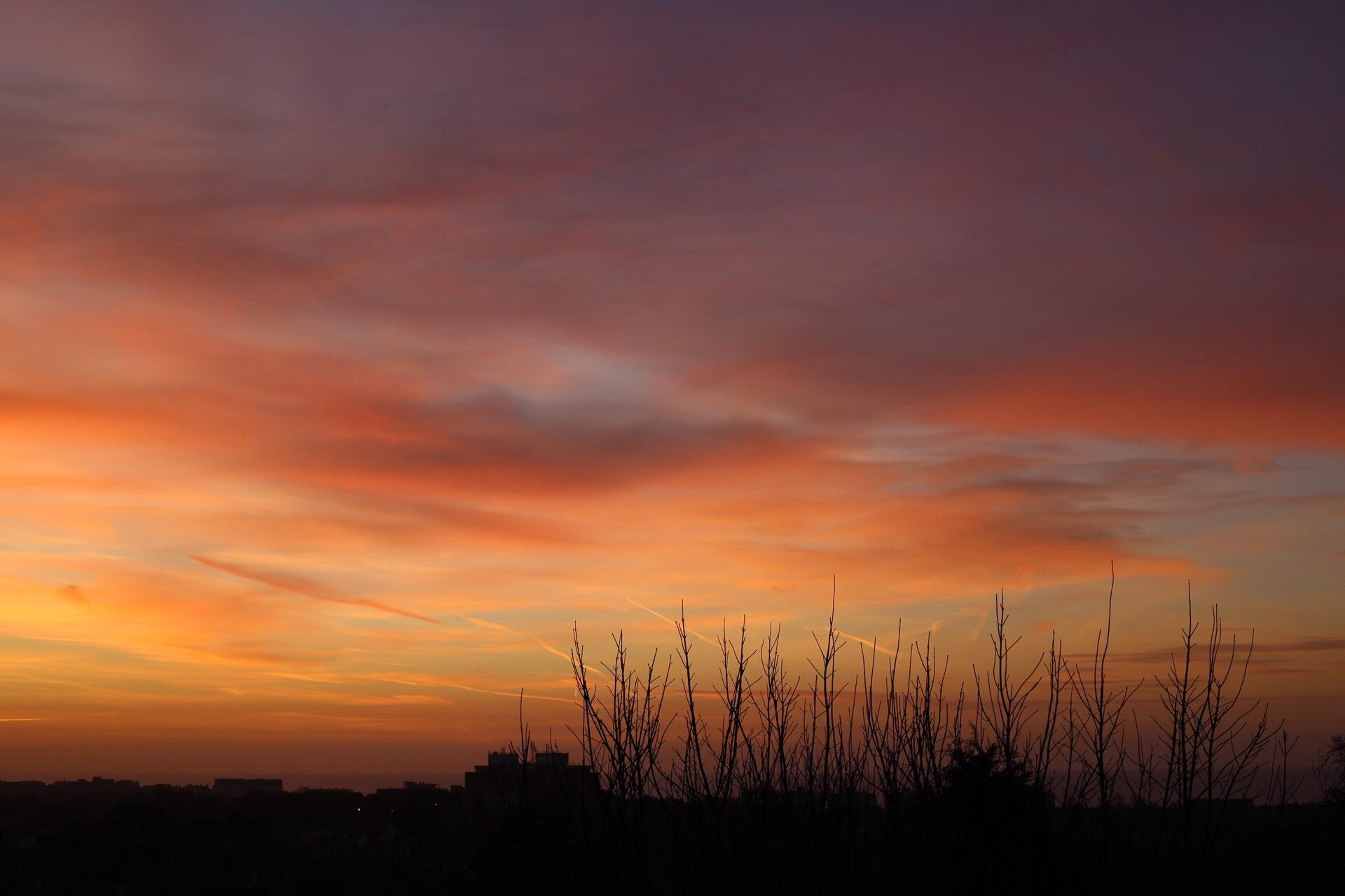 February Sunrise by Katie Meikle