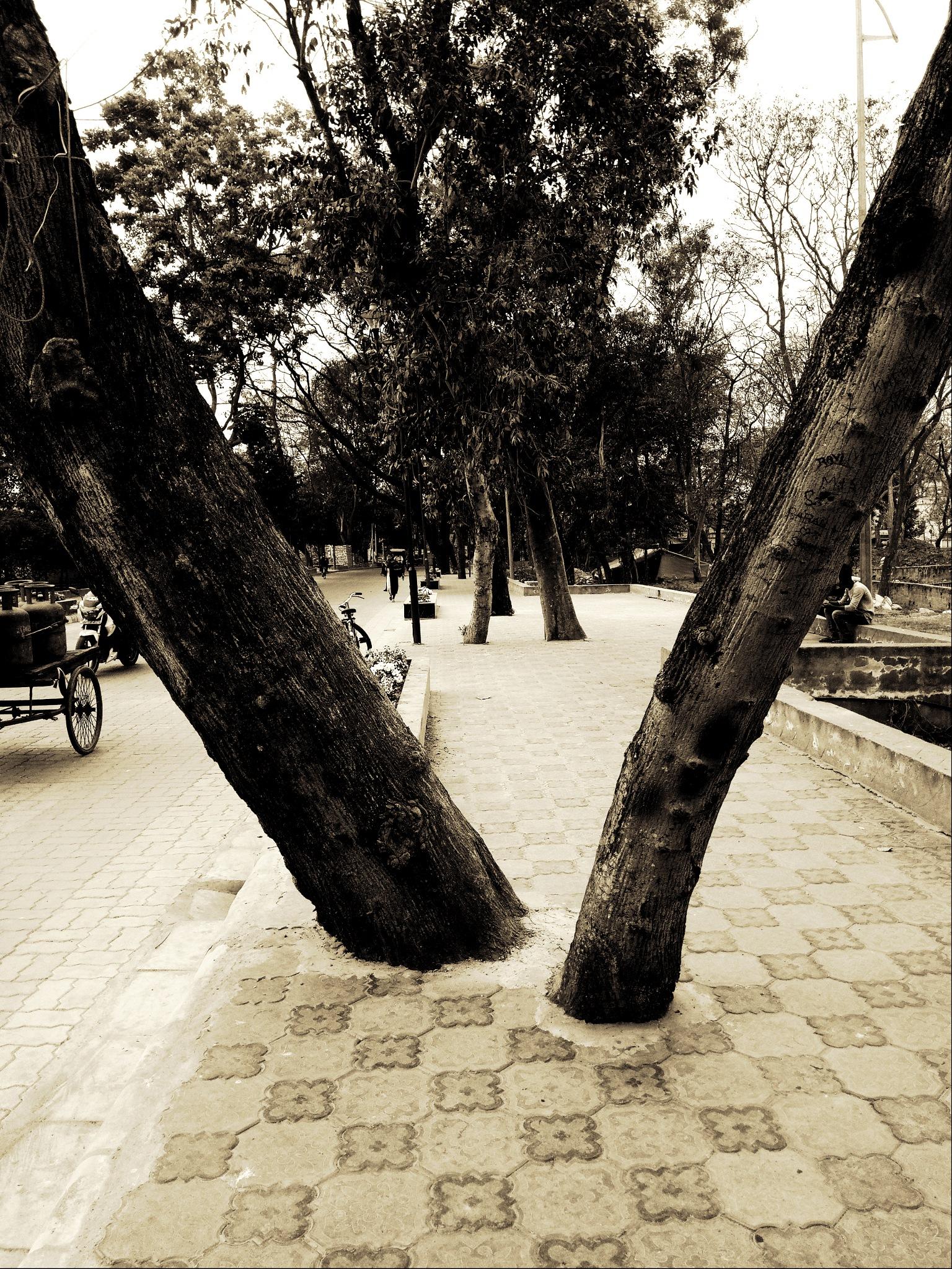 Photo in Random #cityscape