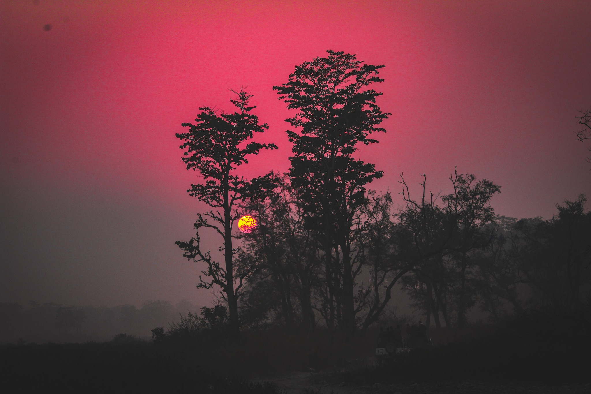red  by rajiv anand