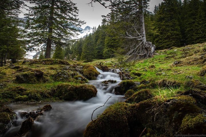 Live us like water; flowing by Philippe Mueller