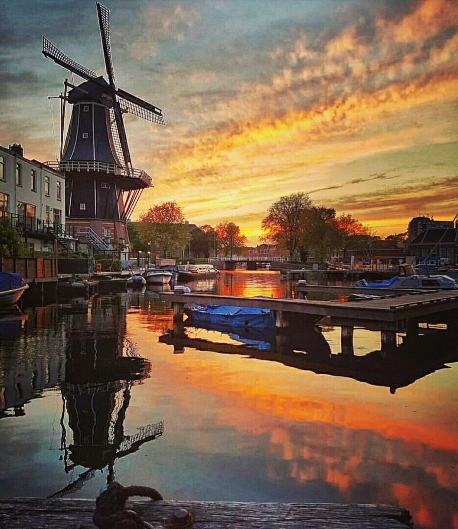Haarlem, Netherlands  by Laurette