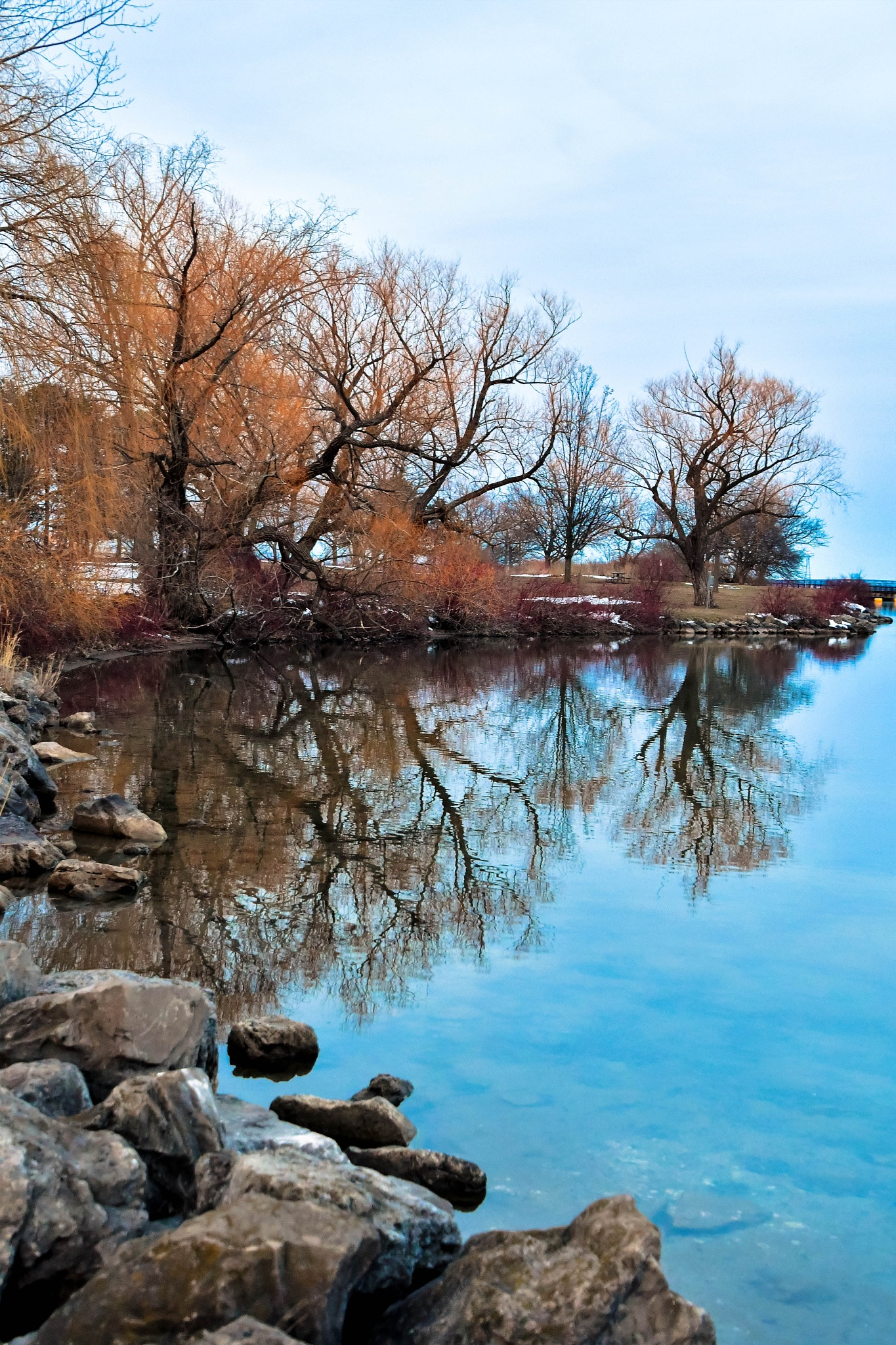 Photo in Random #trending #outdoors #nature #colours #denyspeel #trees #water #landscapes #clarity