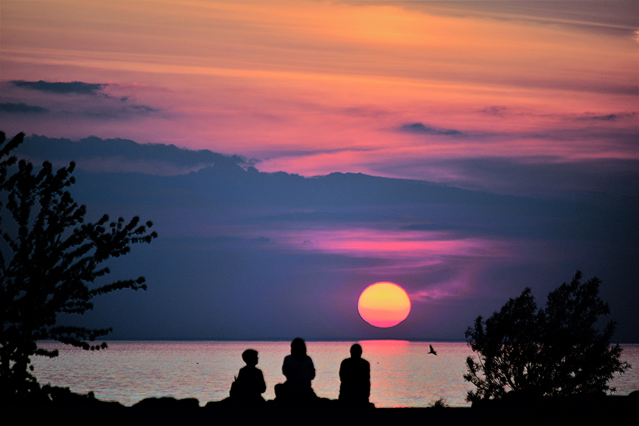 Sunset Silhouettes. by Denys Peel