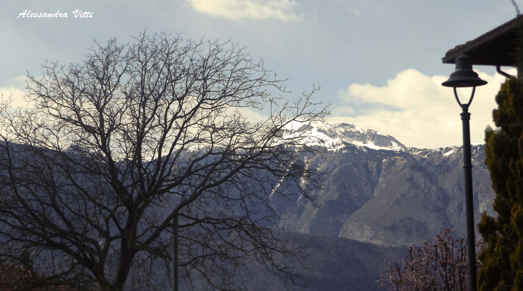 Tres , Val di Non  by avitti