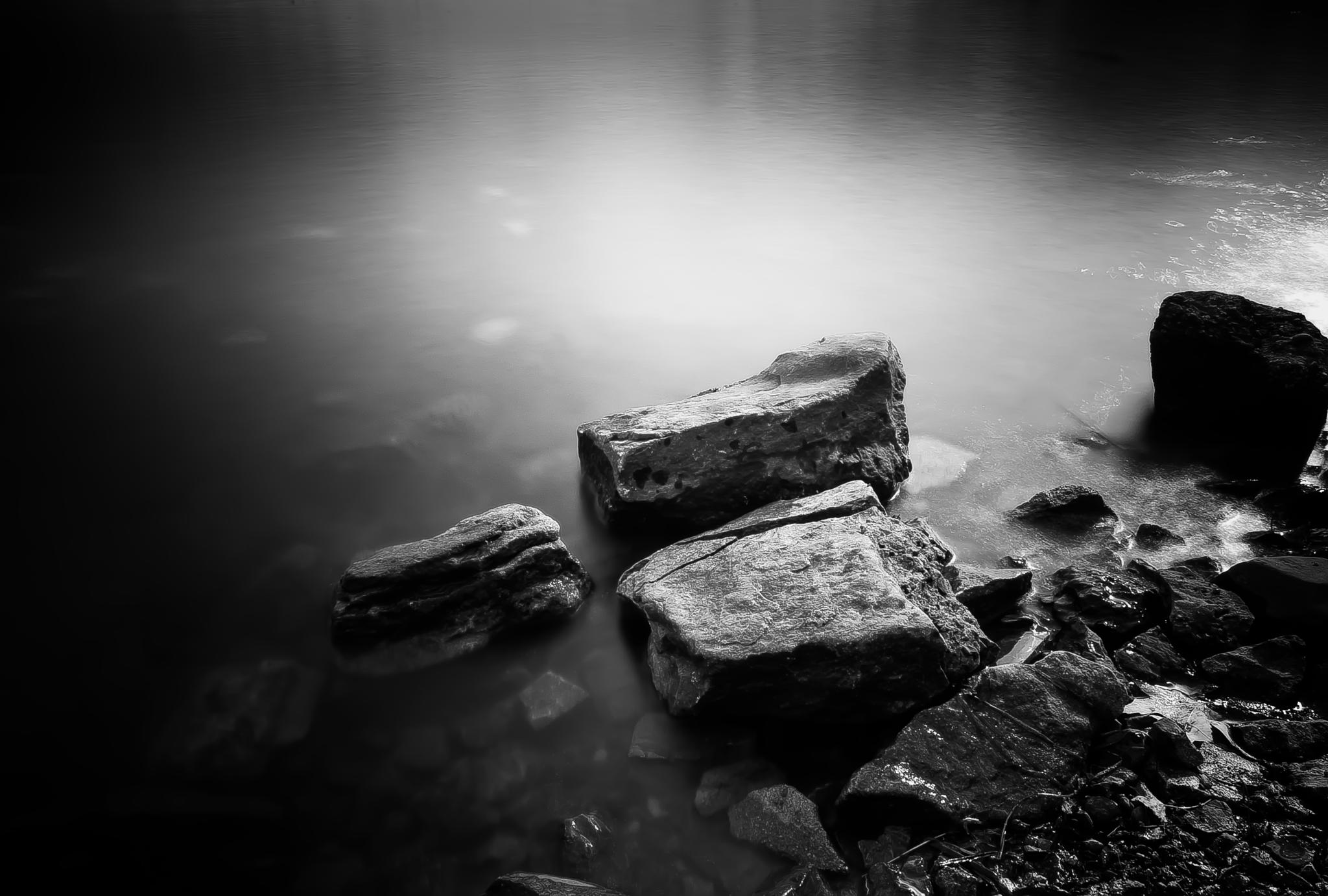 Photo in Black and White #night photography #long exposure by night #long exposure #nature