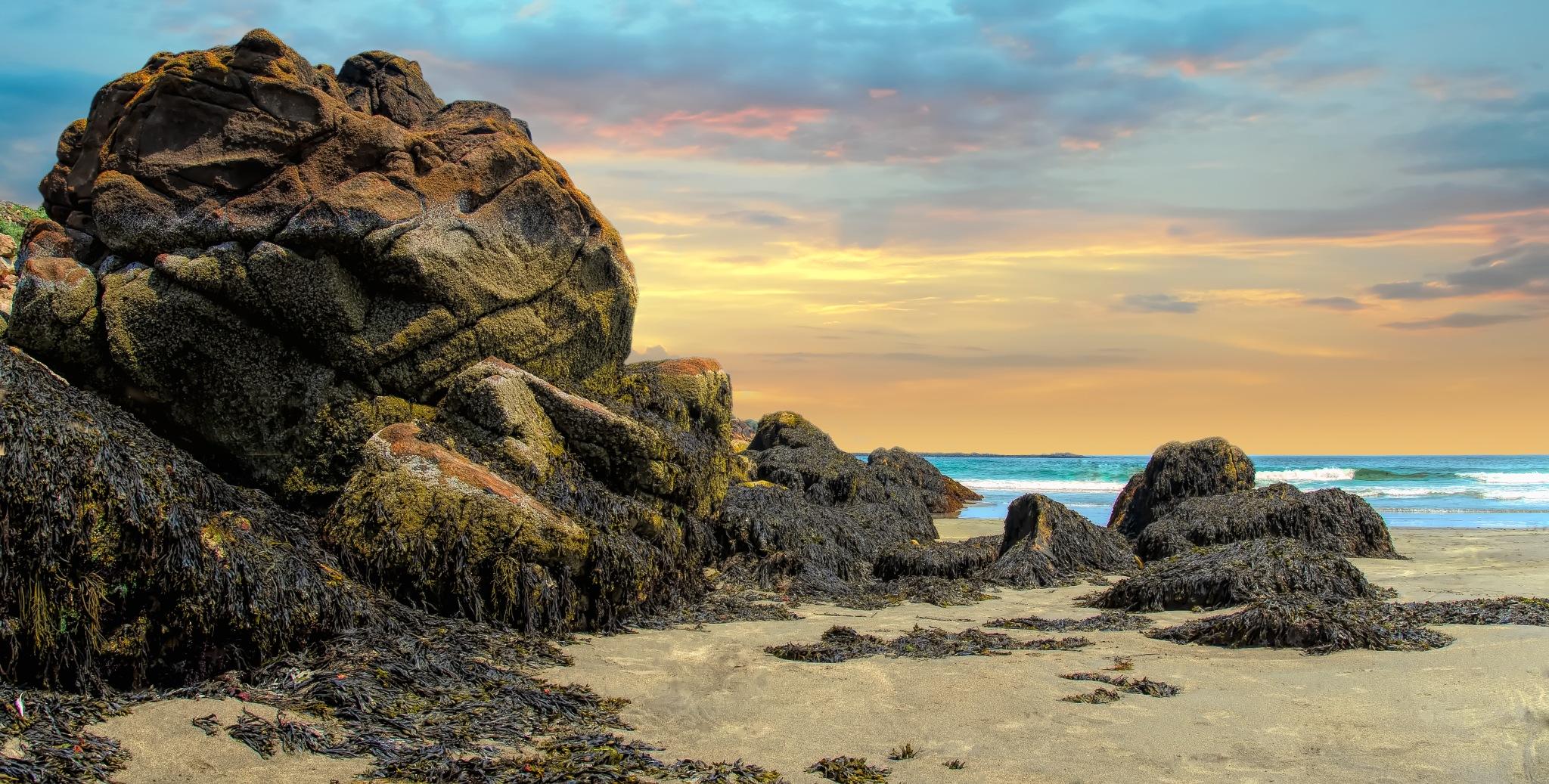 Rock the beach by Jo'Ann Huard