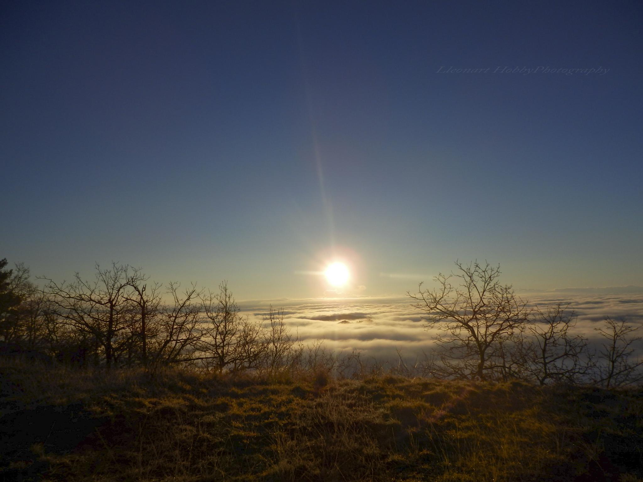 Sunrise by Lleonart
