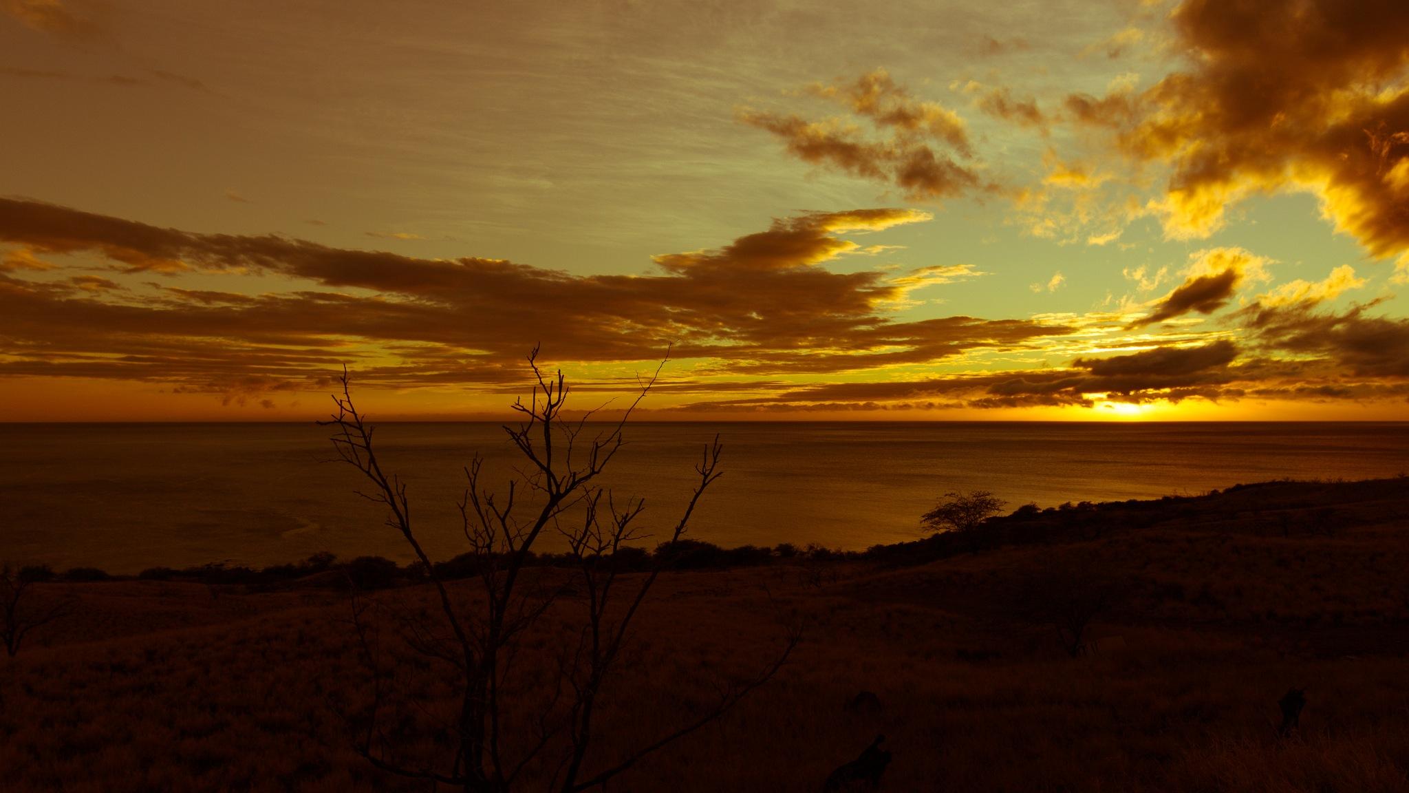 Photo in Landscape #sunset #hawaii #paradise #clouds #serene #calm #peace #zen #quiet #beautiful #ocean