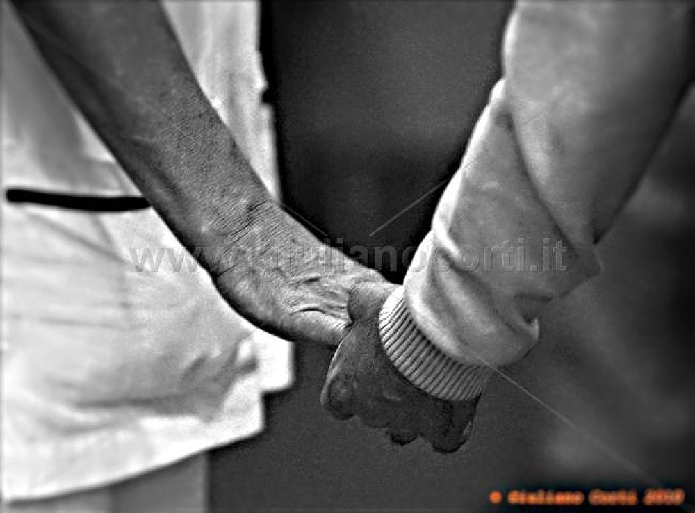 L'amicizia-dsc1316-2 by Giuliano_Corti
