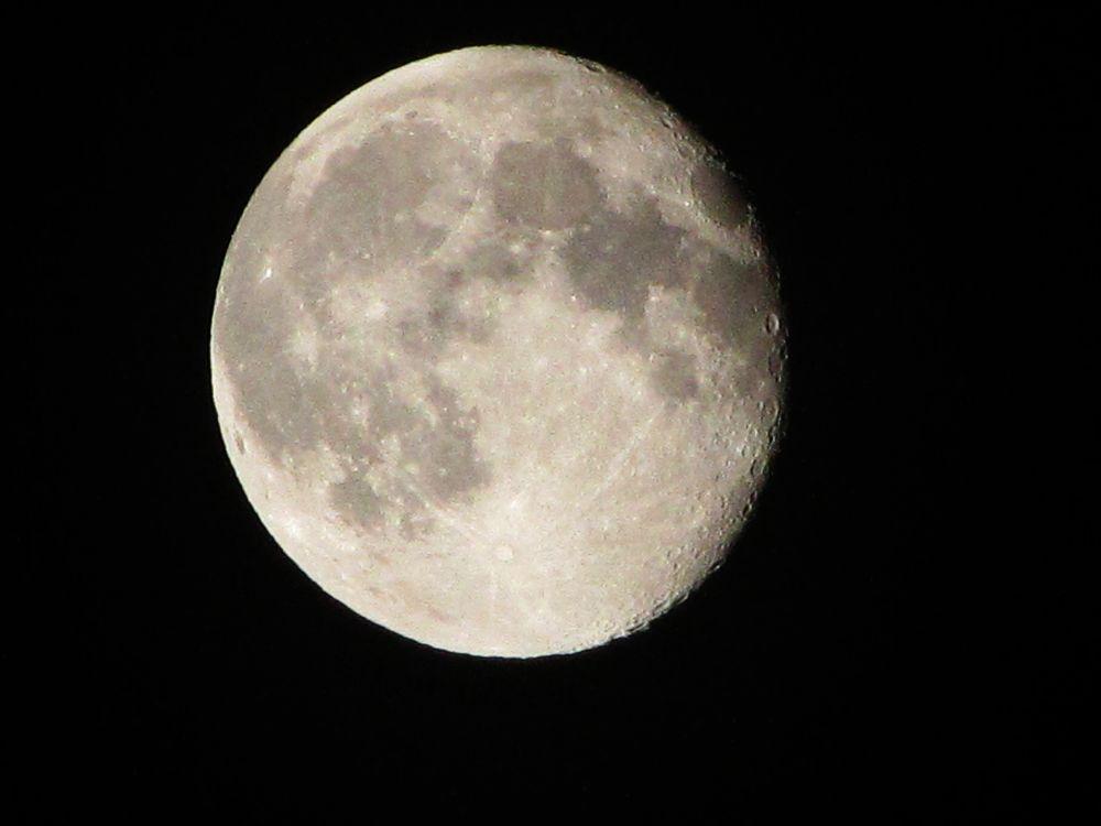 Luna by Łukasz Michalak
