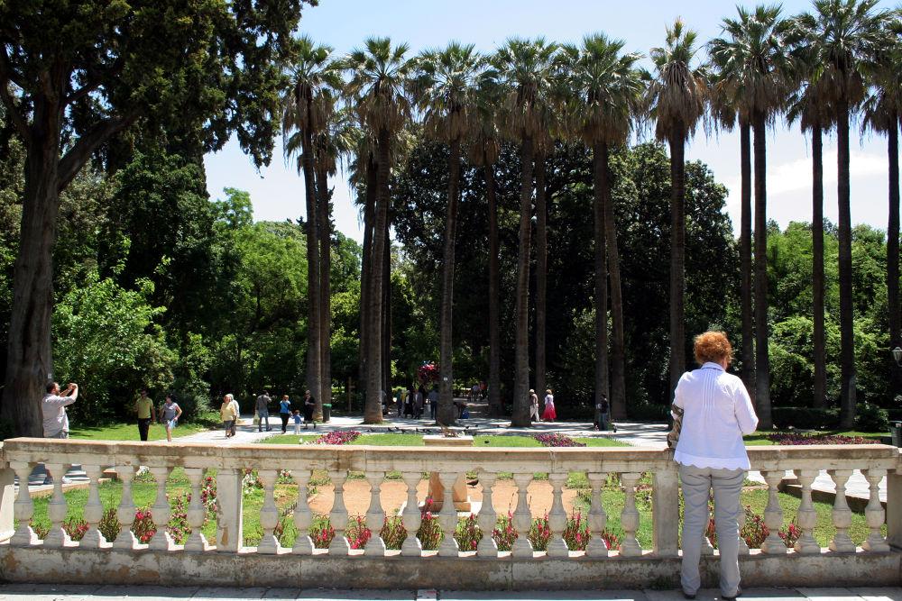 Photo in Random #athens #national garden