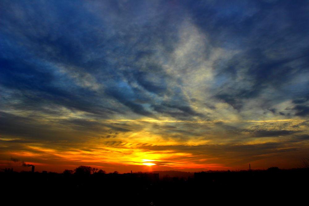dawn by Romanowicz