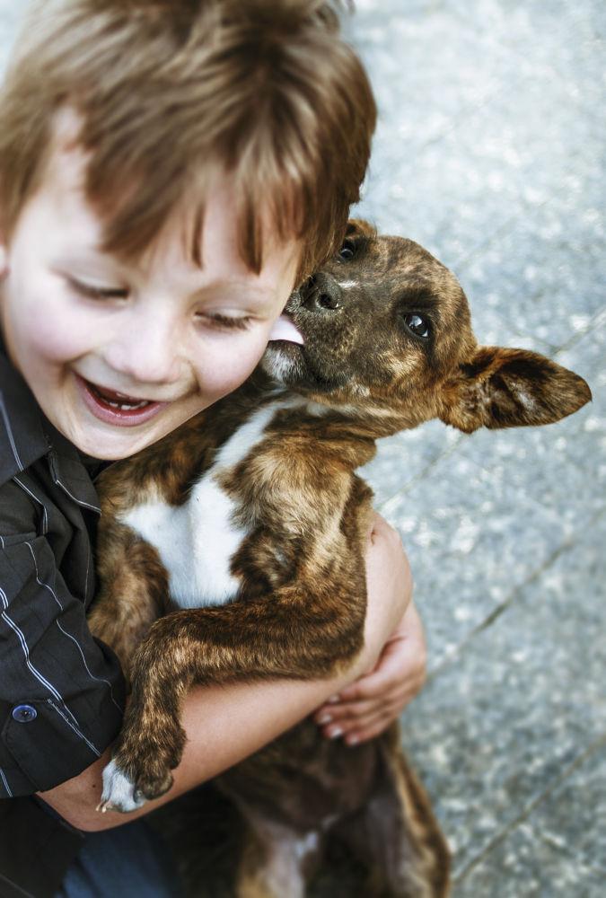 Dog by nyckmaftum