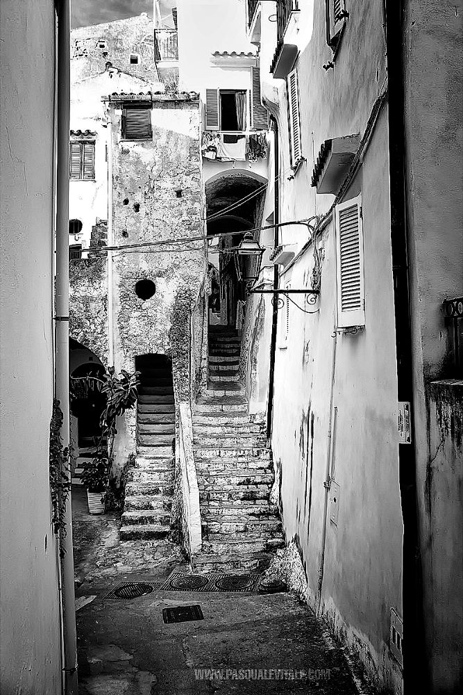 Untitled-1 by Pasquale Vitale