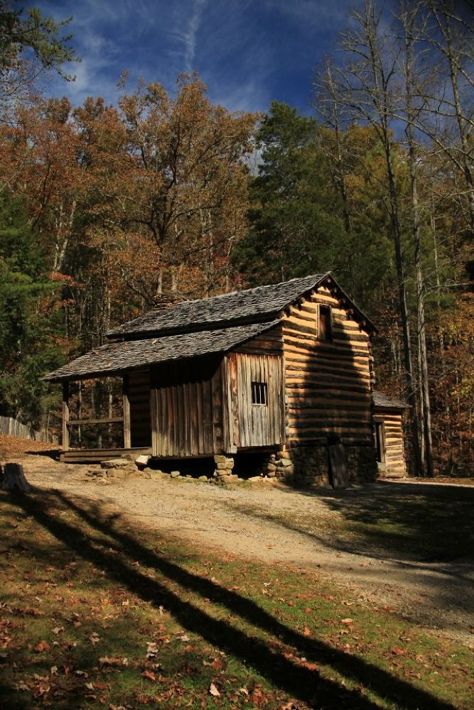 Cabin in the Woods by timgonoles