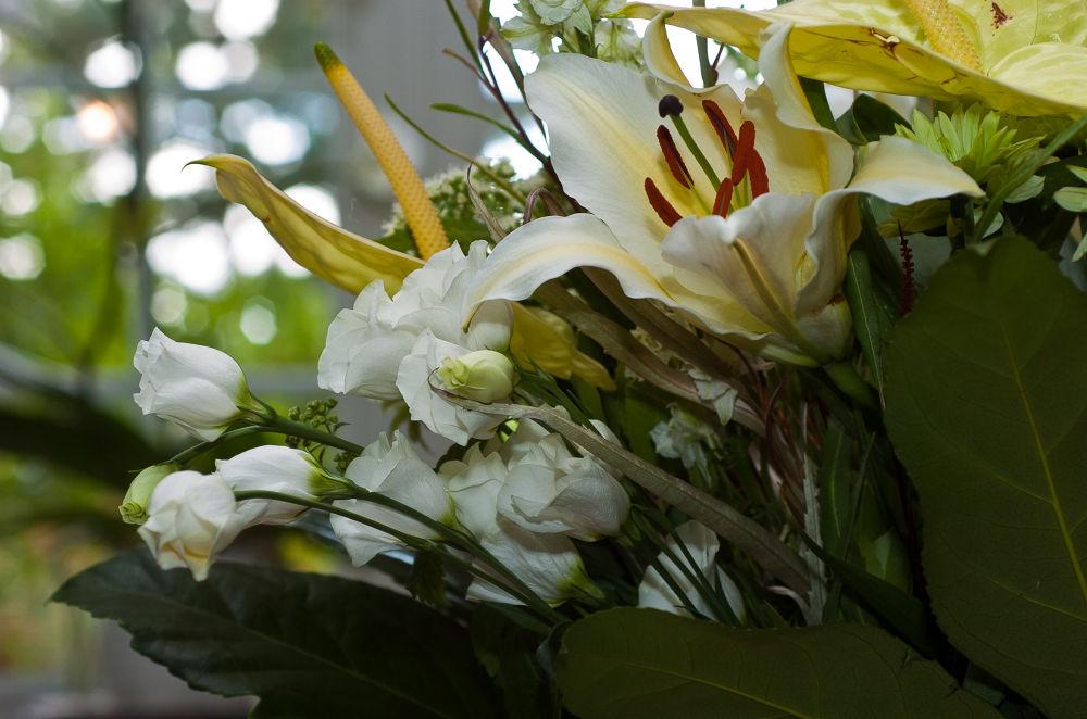 25092012 Bouquet.. by photosdan