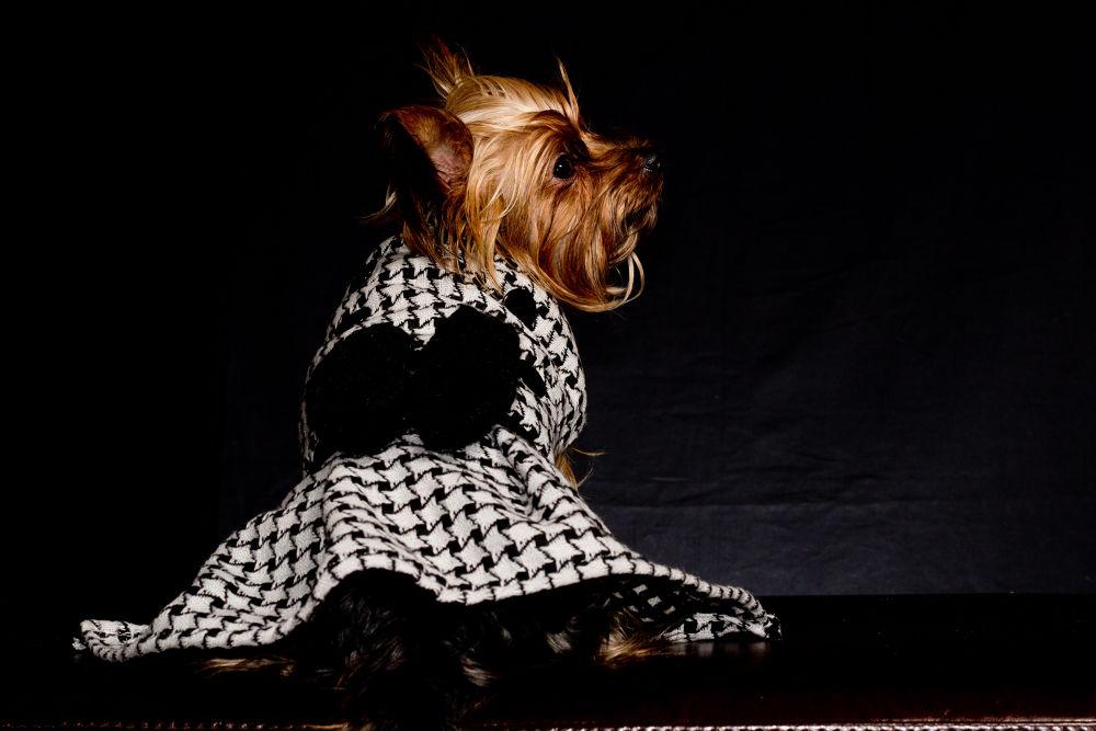 Houndtooth Handmade Black And White Peplum Styled Coat by PuppyCloset