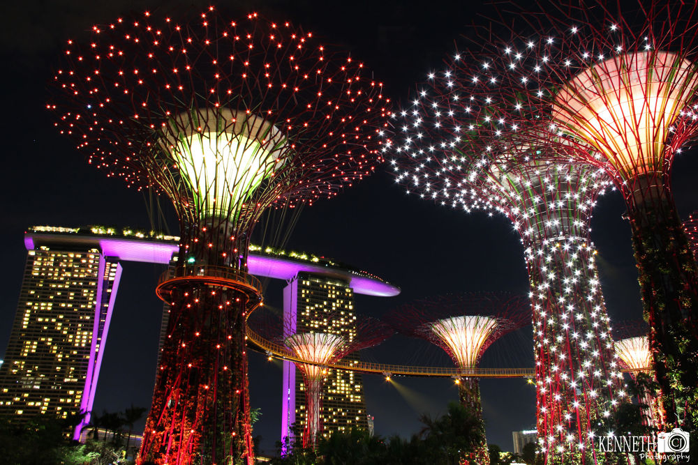 Garden By The Bay Singapore by chengjun
