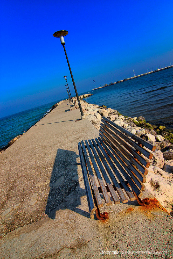 IMG_6116 by Pasquale Vitale