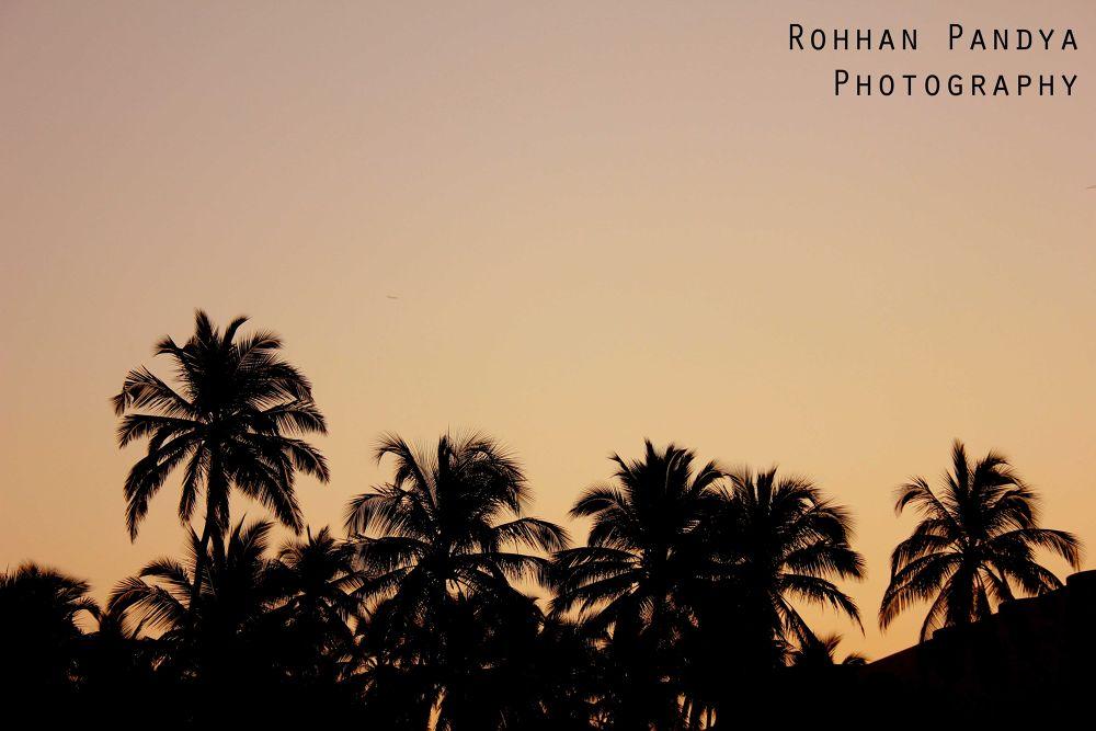 IMG_2837 by rohhanpandya