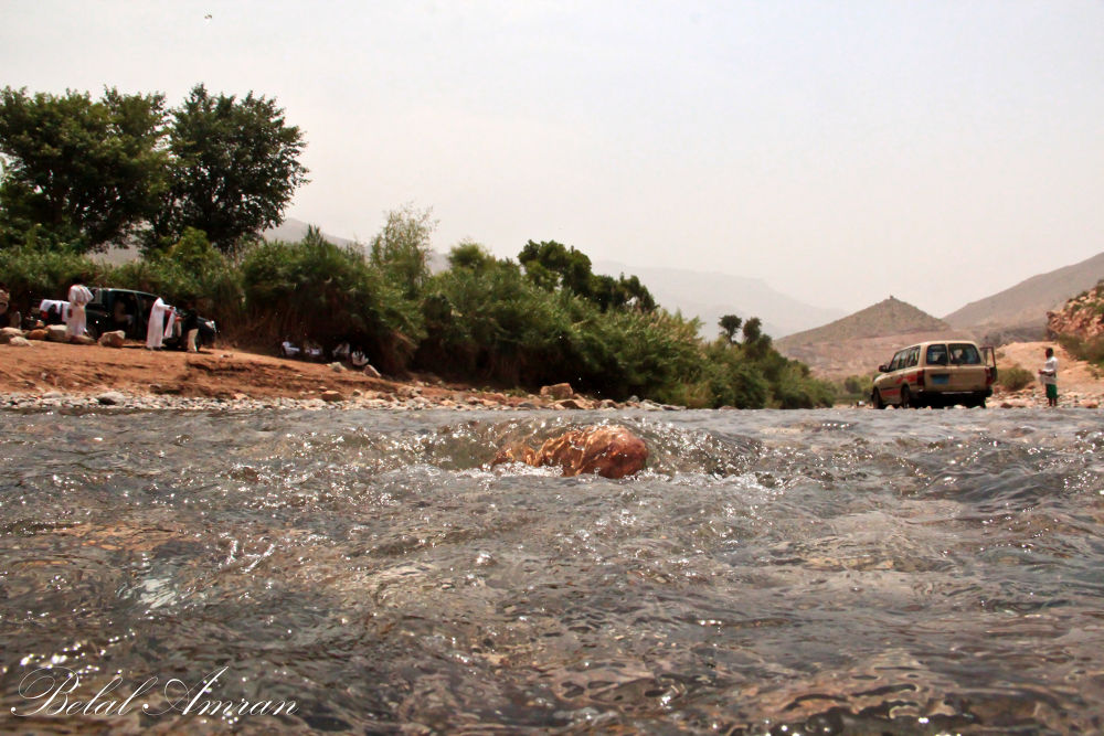 in Yemen by lionheart