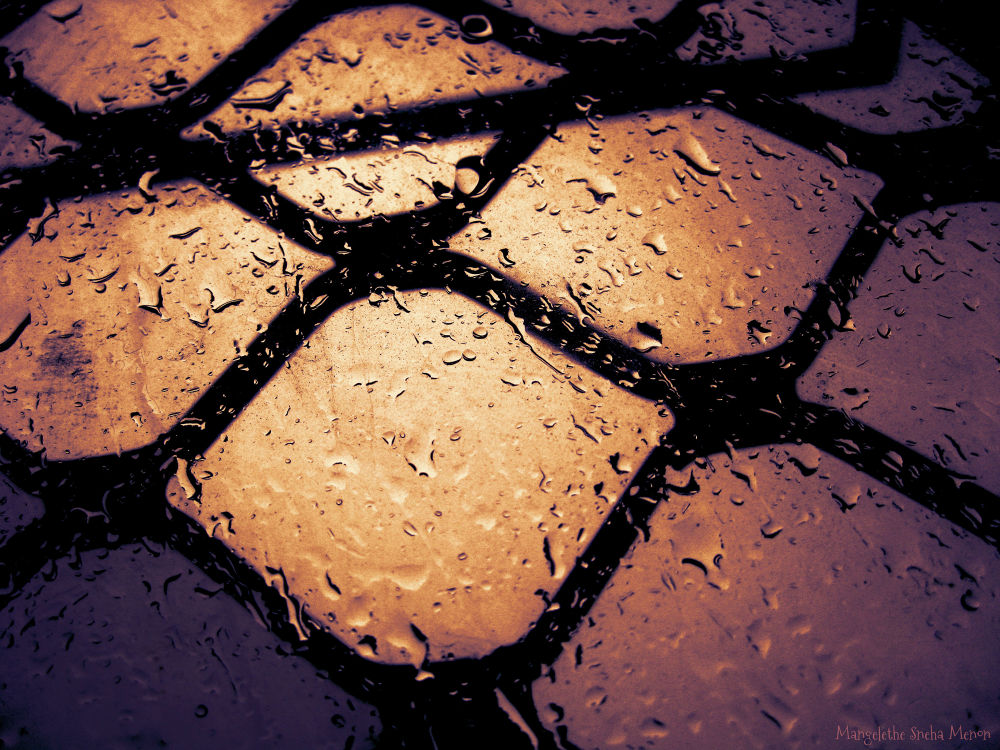 Photo in Random #water #rain #drops #storm